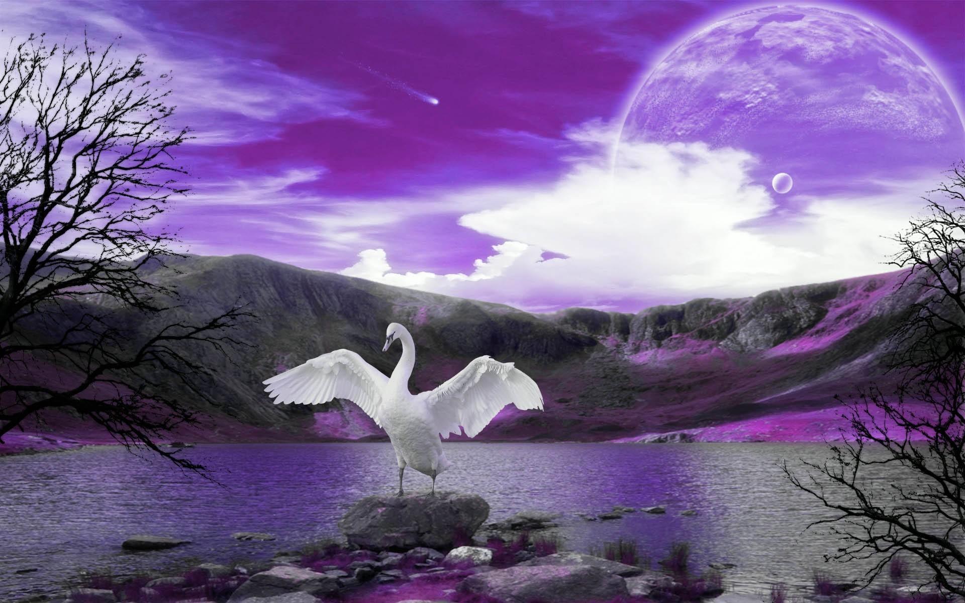 Res: 1920x1200, Swan song wallpaper