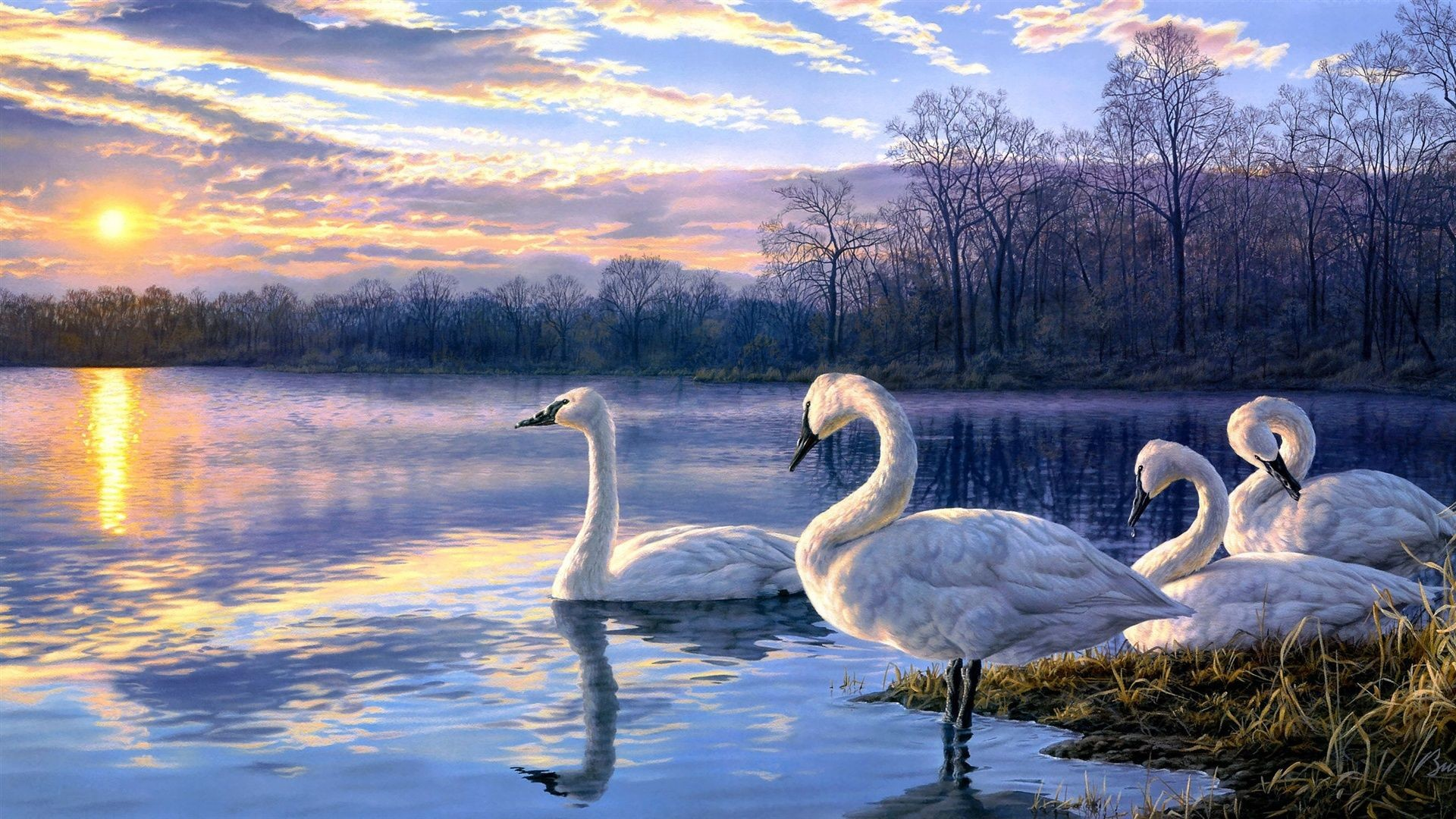 Res: 1920x1080, Discover ideas about Swan Painting
