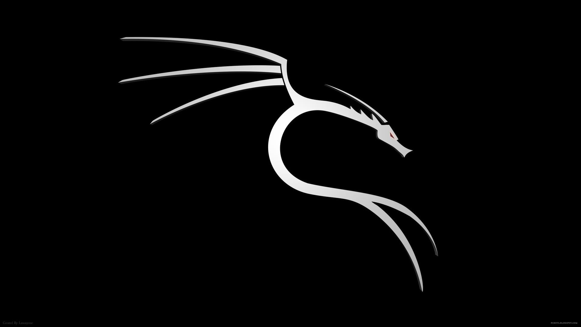 Res: 1920x1080, BackTrack Silver Dragon