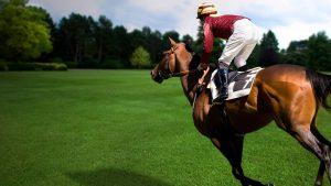 Horse Racing wallpapers