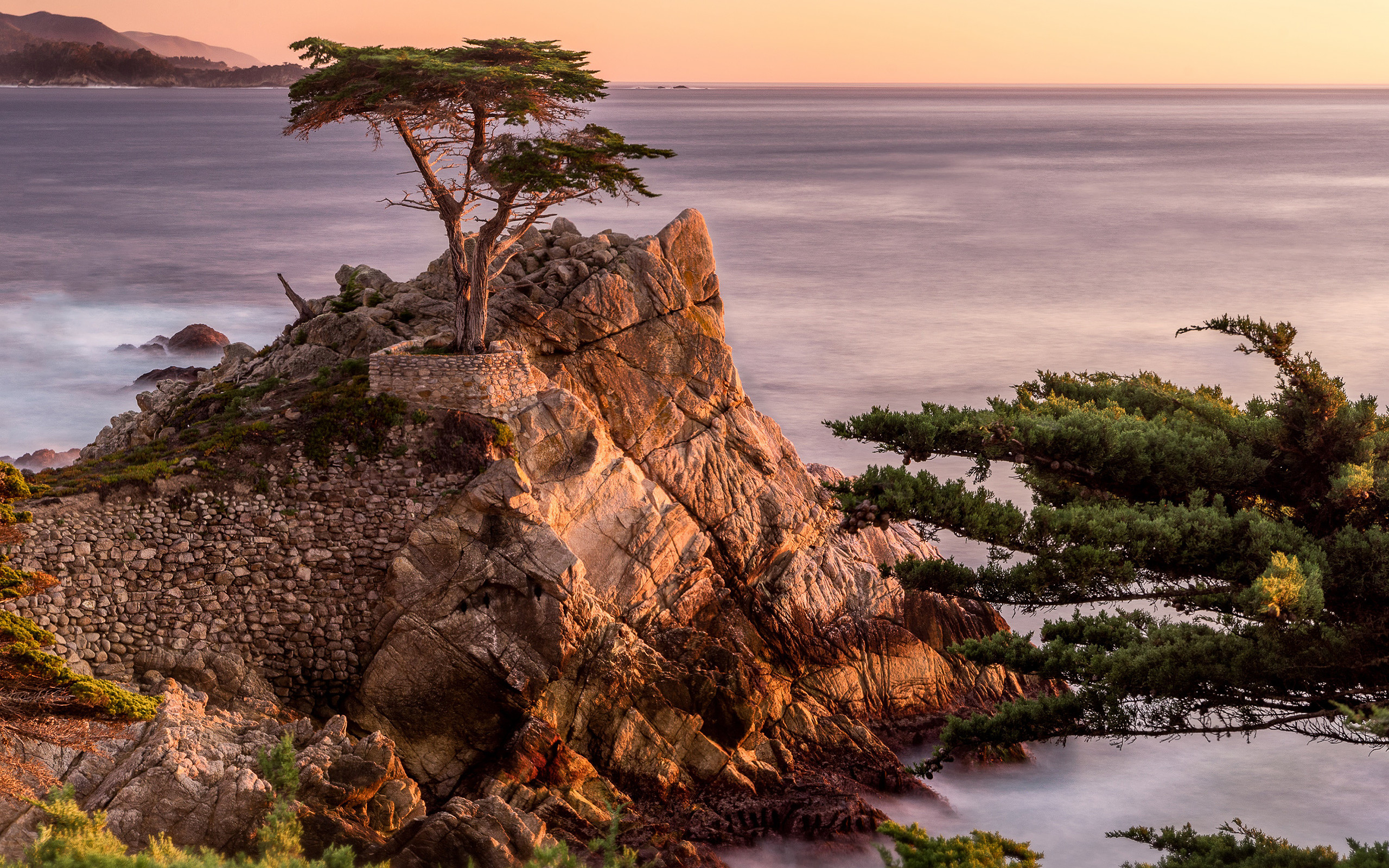 Res: 2560x1600, Daily Wallpaper: Lone Cypress, Pebble Beach, California   I Like To Waste  My Time
