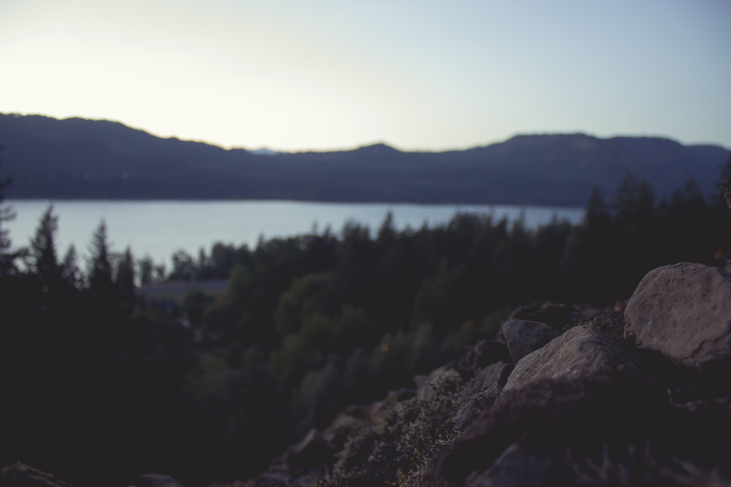 Res: 2560x1707, faded-blurred-forest-and-sea.jpg, ...