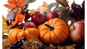 Autumn Pumpkin wallpapers