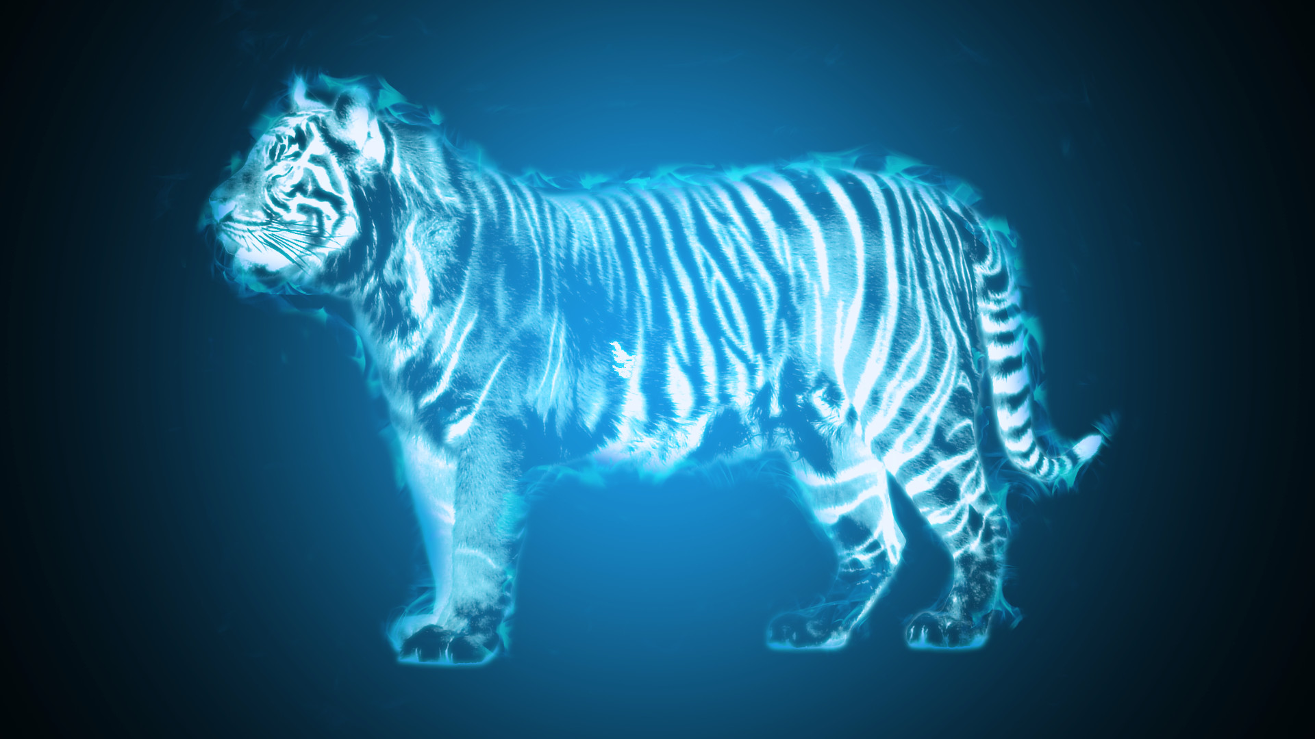 Res: 1920x1080, Tiger Wallpapers Full HD wallpaper search