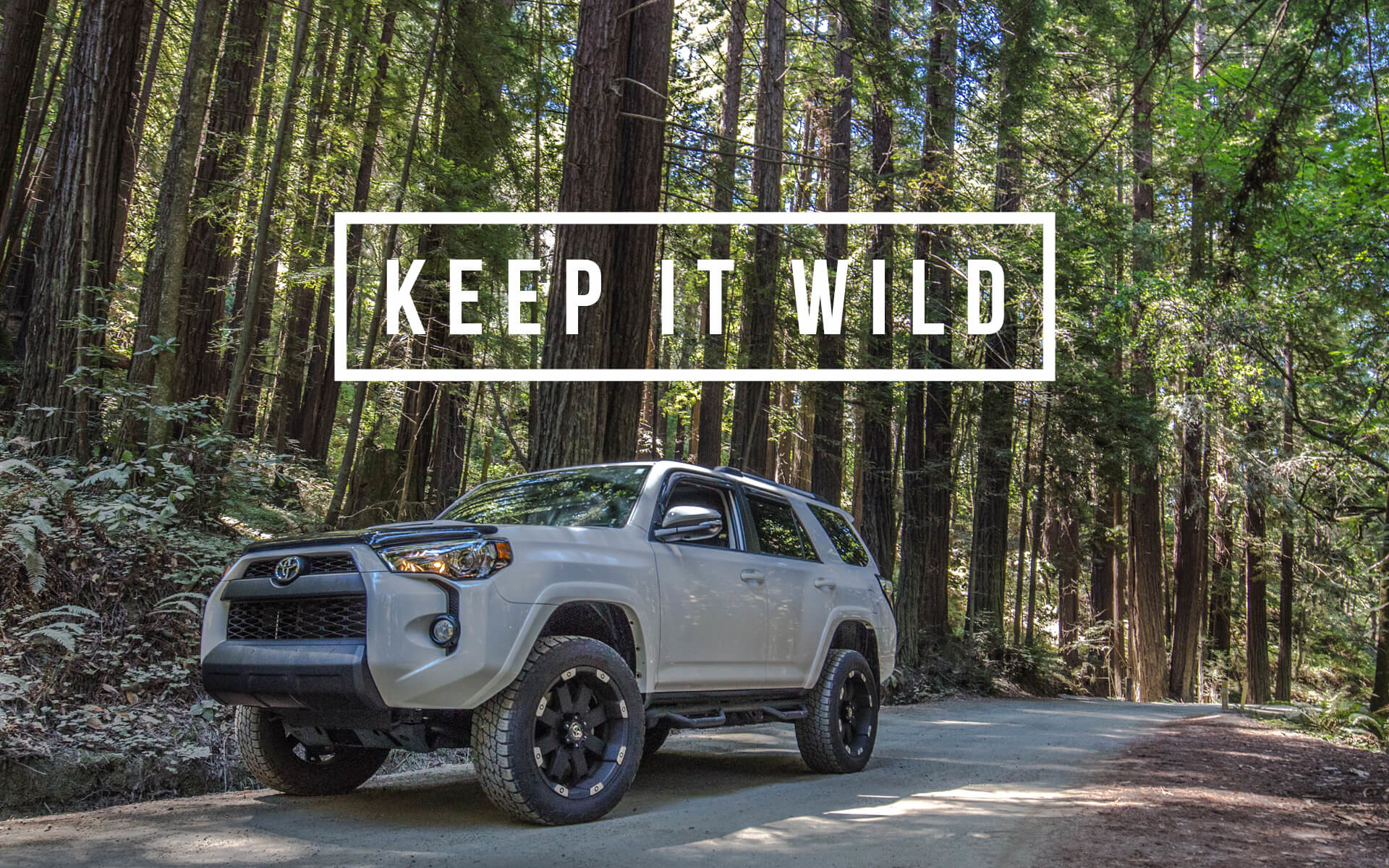 Res: 1920x1200, TRD PRO Wallpaper Background - Keep It Wild