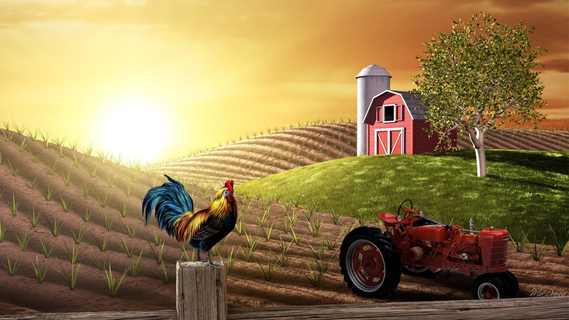 Res: 1920x1080, 12.28.14, Farm Full HD Wallpapers - for PC & Mac, Laptop, Tablet, Mobile  Phone