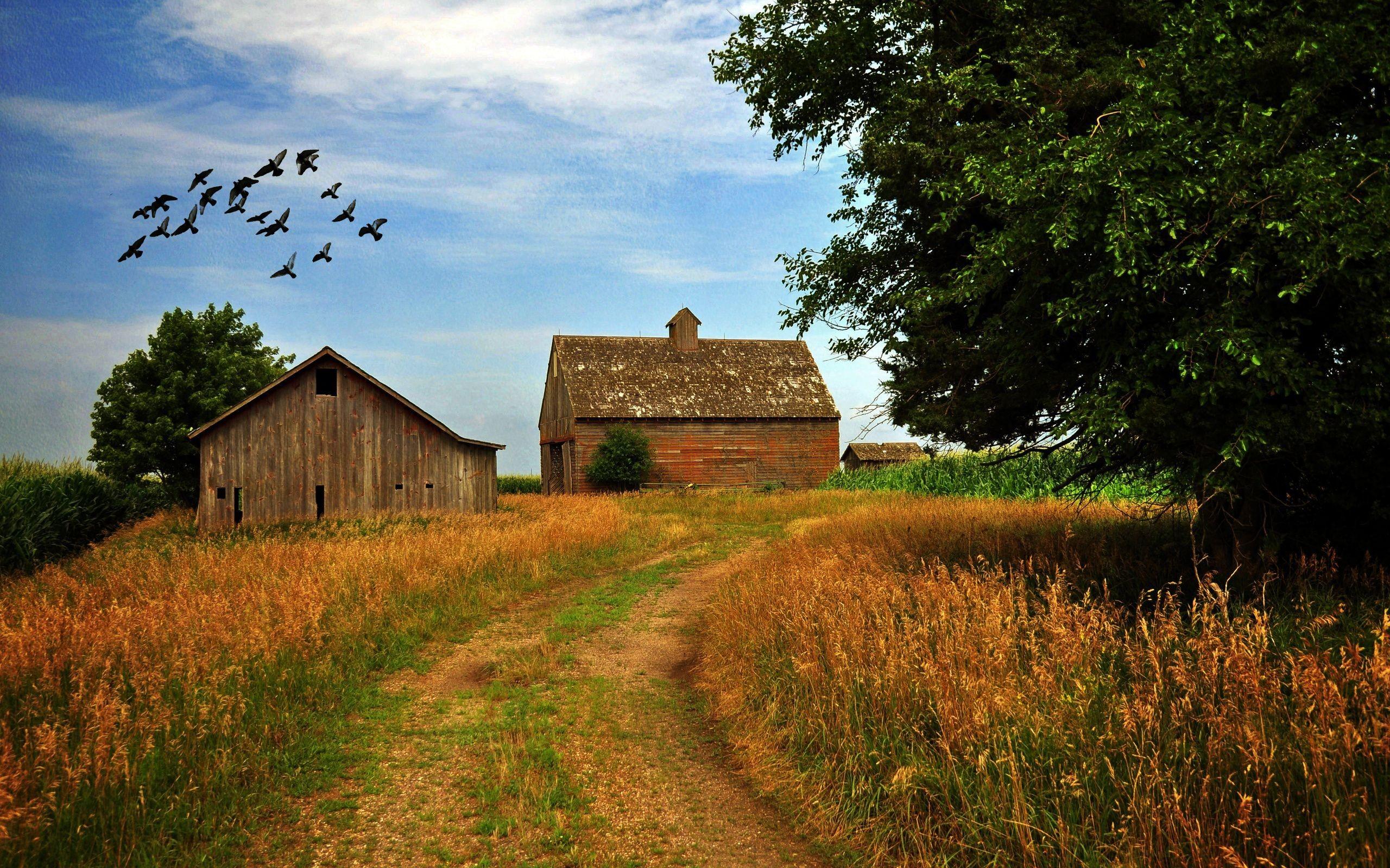 Res: 2560x1600, ... Farm HD Wallpaper