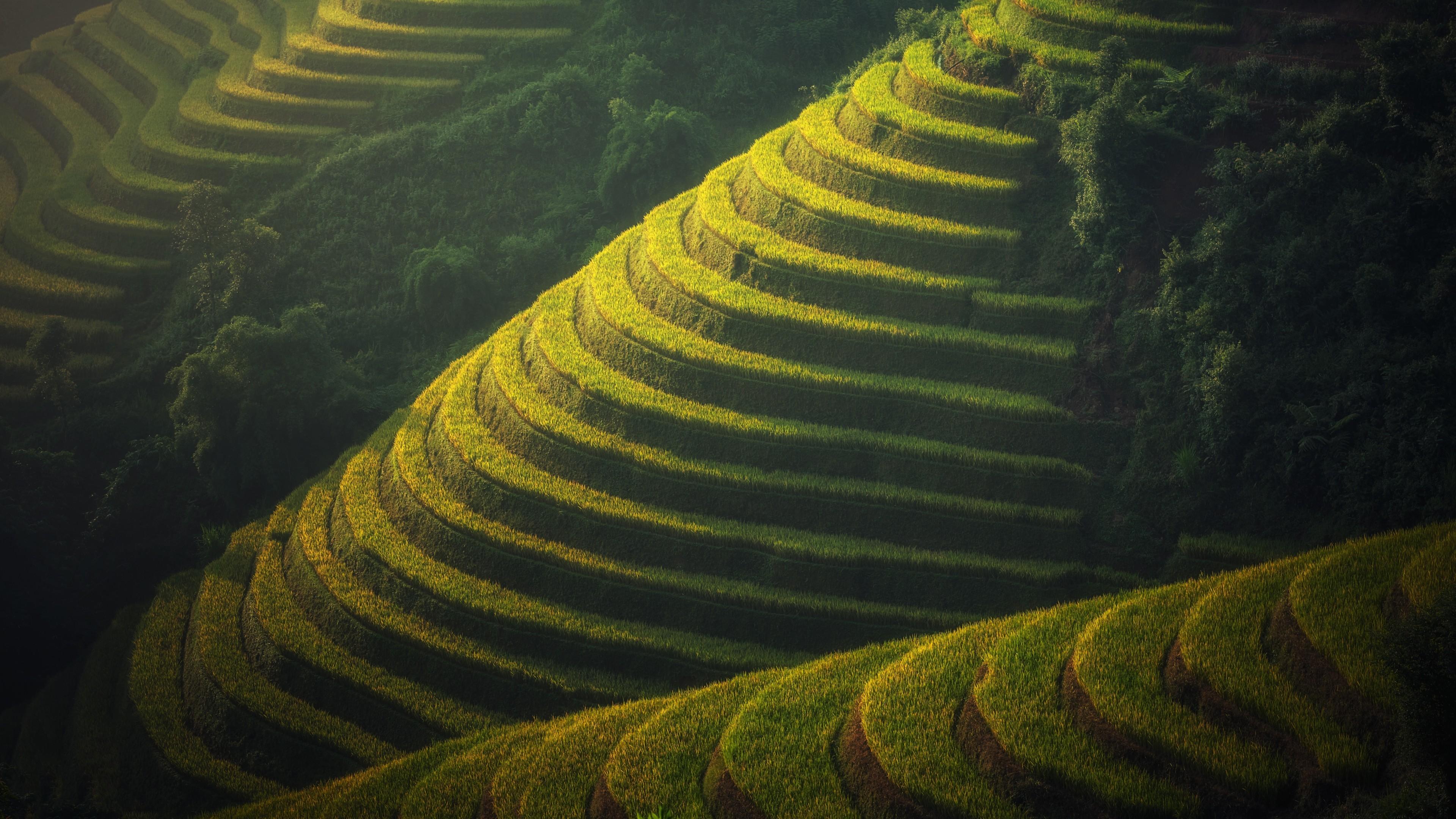 Res: 3840x2160, Nature / Farm Wallpaper