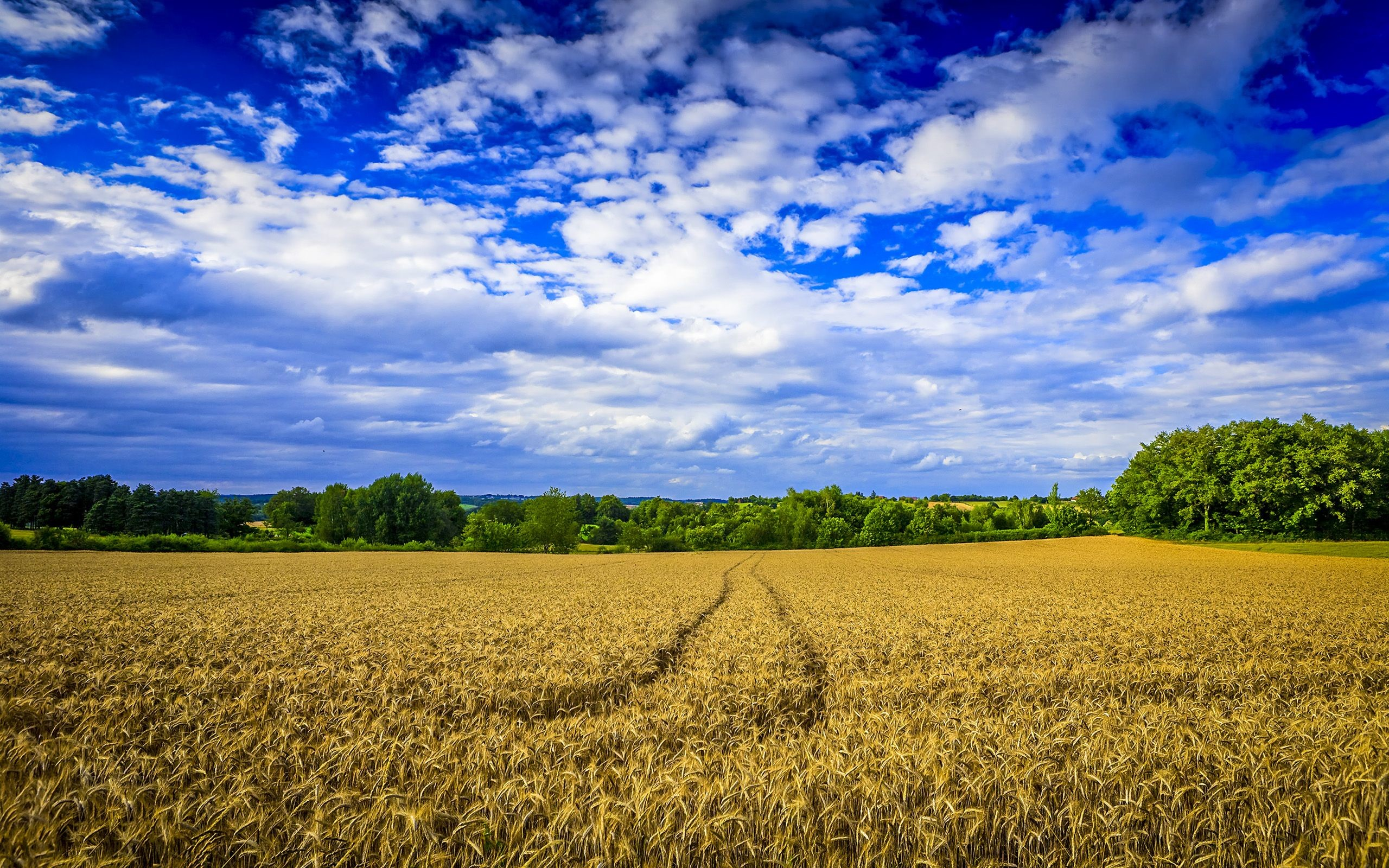 Res: 2560x1600, Download Farm Wallpaper 2519 1920x1080 px High Resolution ... - HD  Wallpapers
