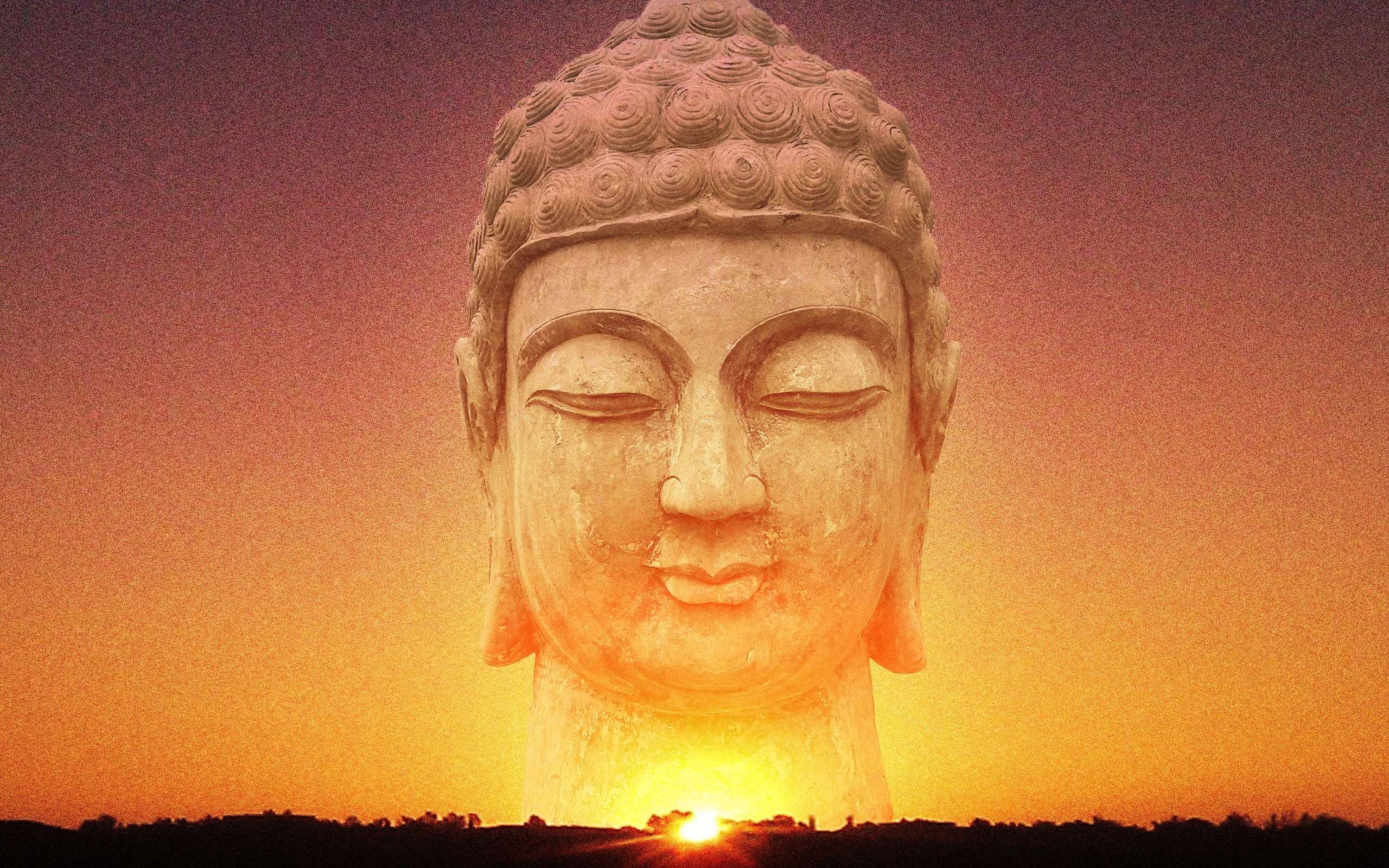 Res: 2560x1600, Wallpaper Lord Buddha Wallpaper Iphone Wallpapers Mobile. Download Free  Wallpaper