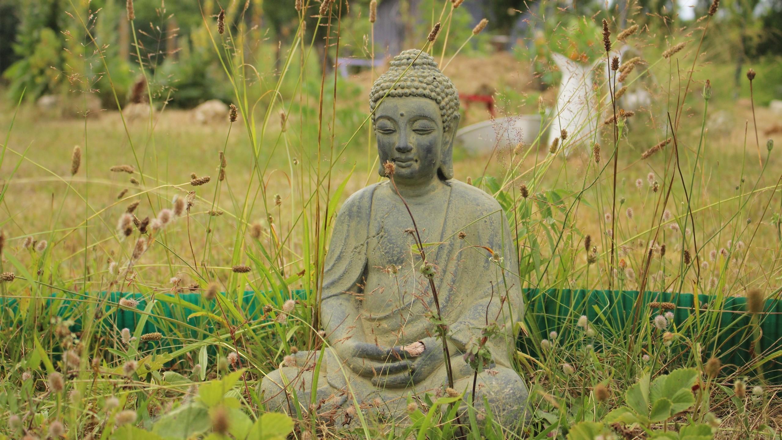 Res: 2560x1440,  Wallpaper buddha, buddhism, meditation, grass
