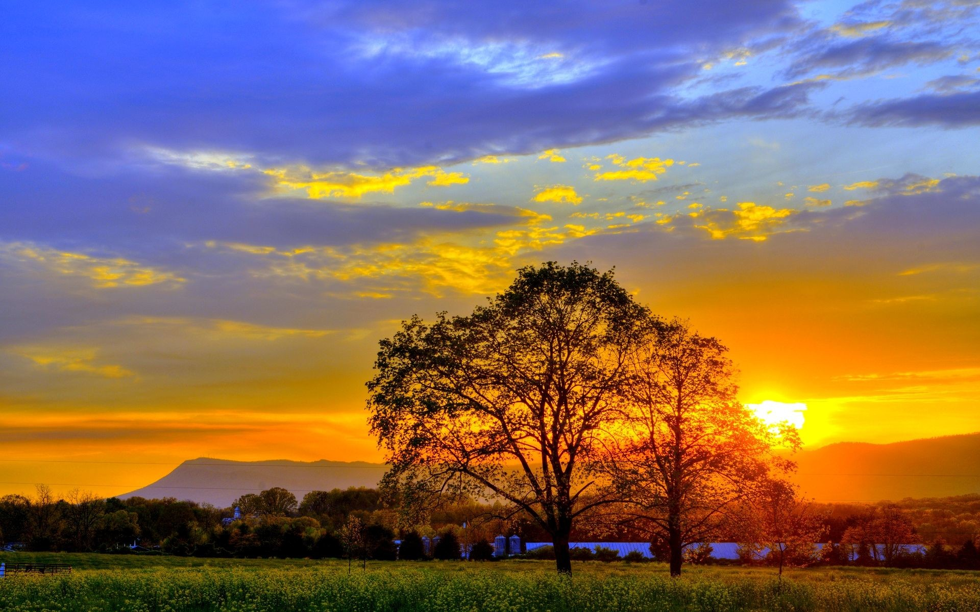 Res: 1920x1200, Summer Sunset Wallpapers Widescreen 2 HD Wallpapers | Hdimges.