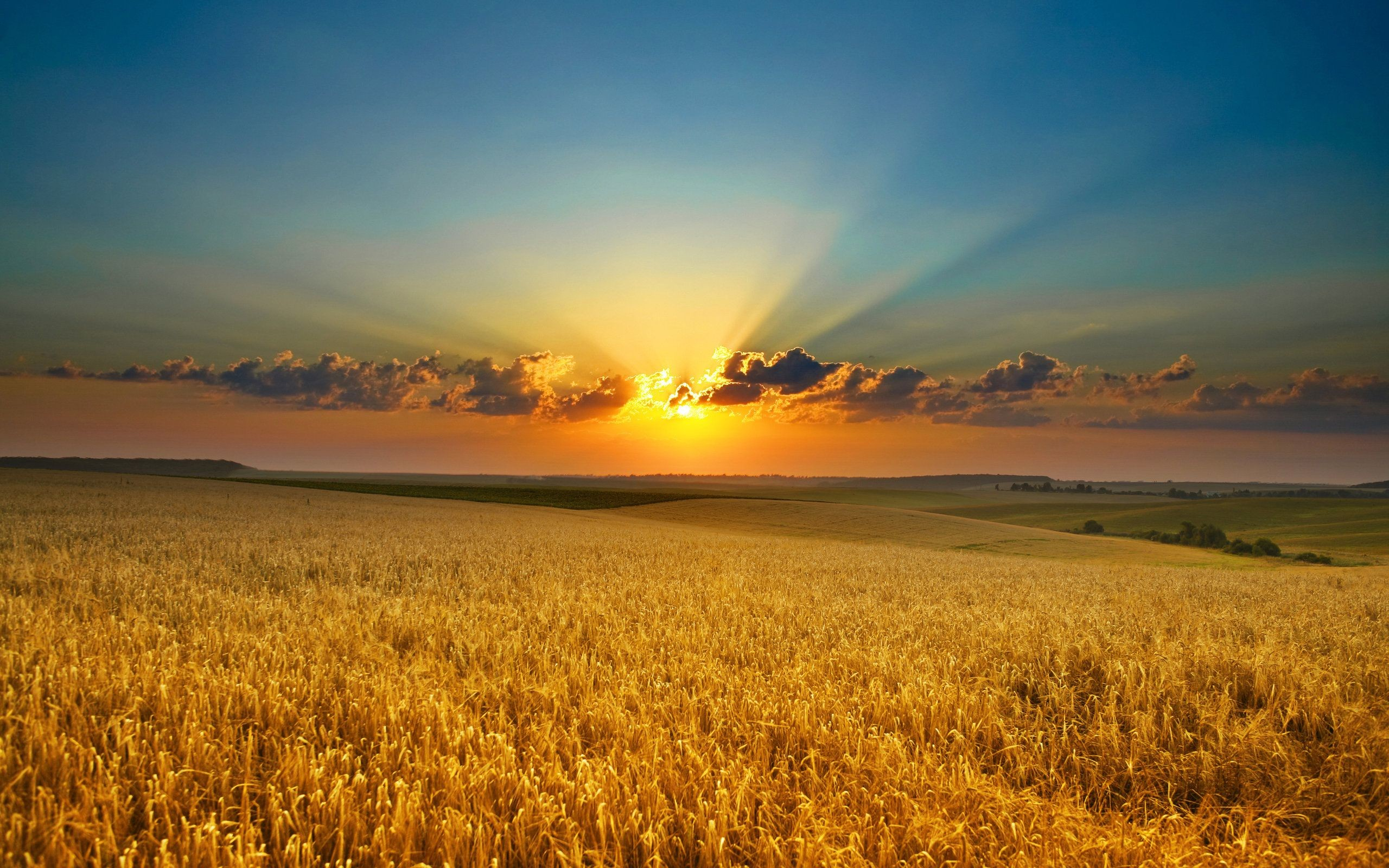 Res: 2560x1600, Summer Sunset Wallpapers Pictures in High Definition Wallpaper
