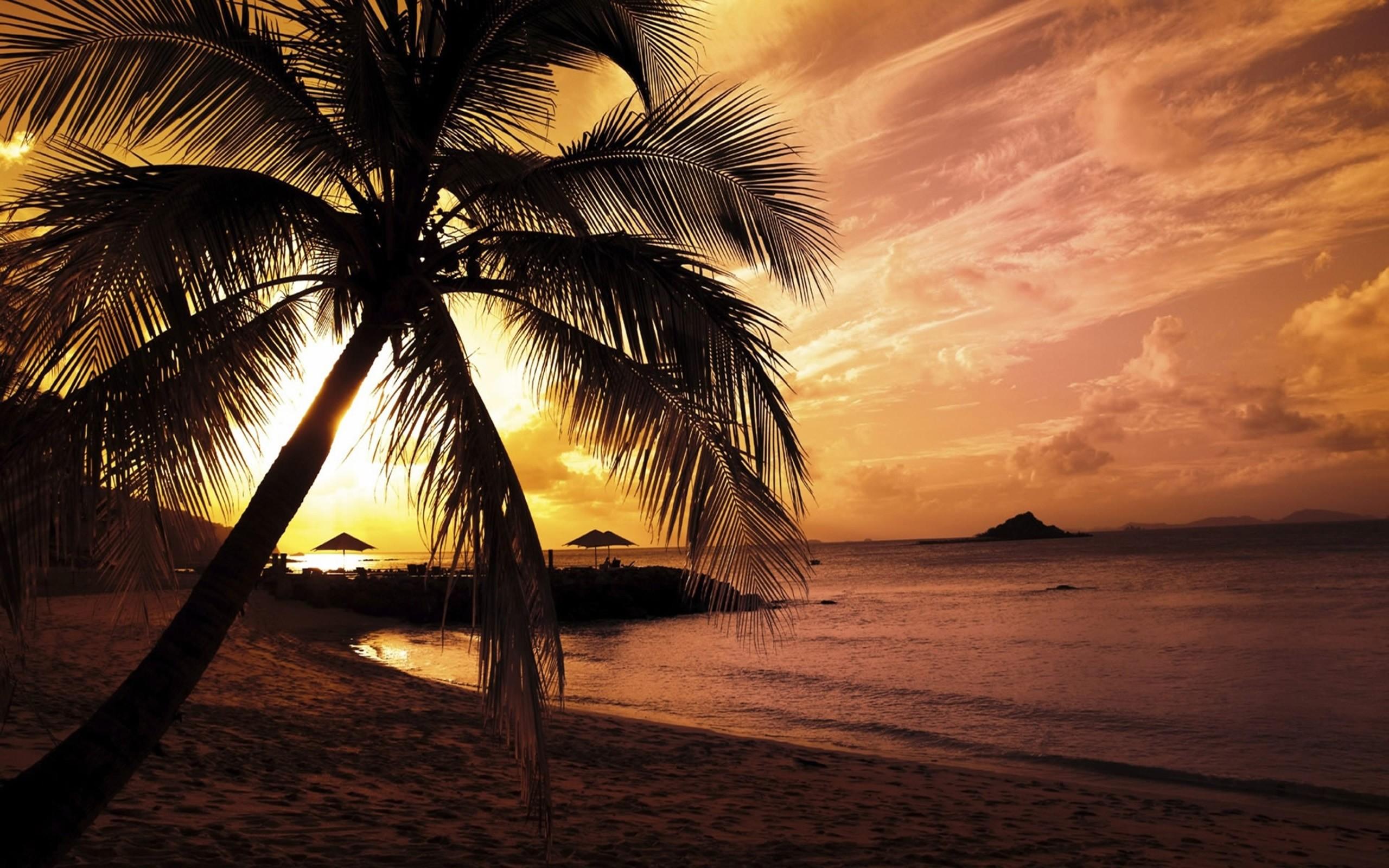 Res: 2560x1600, nature summer sunset beach wallpaper