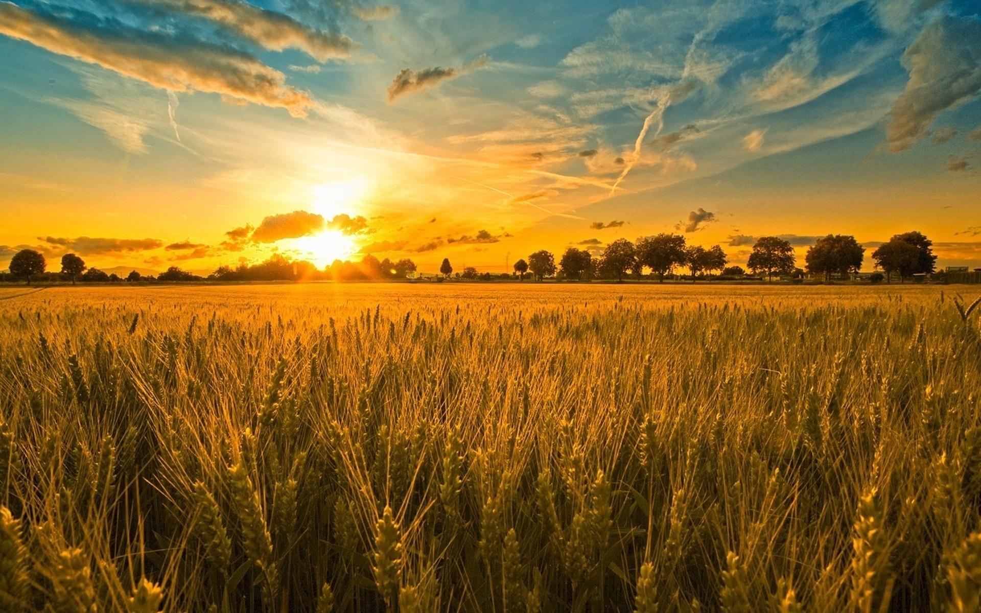 Res: 1920x1200, summer sunset wallpaper nature. Â«Â«