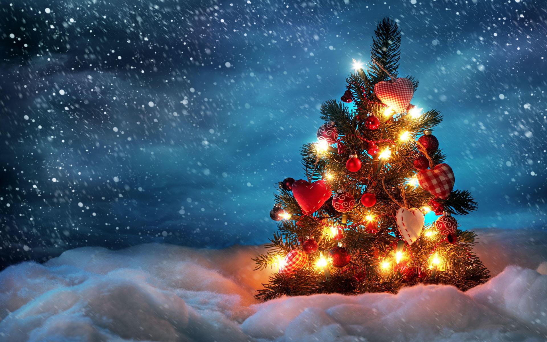 Res: 1920x1200, Christmas gift tree HD wallpaper