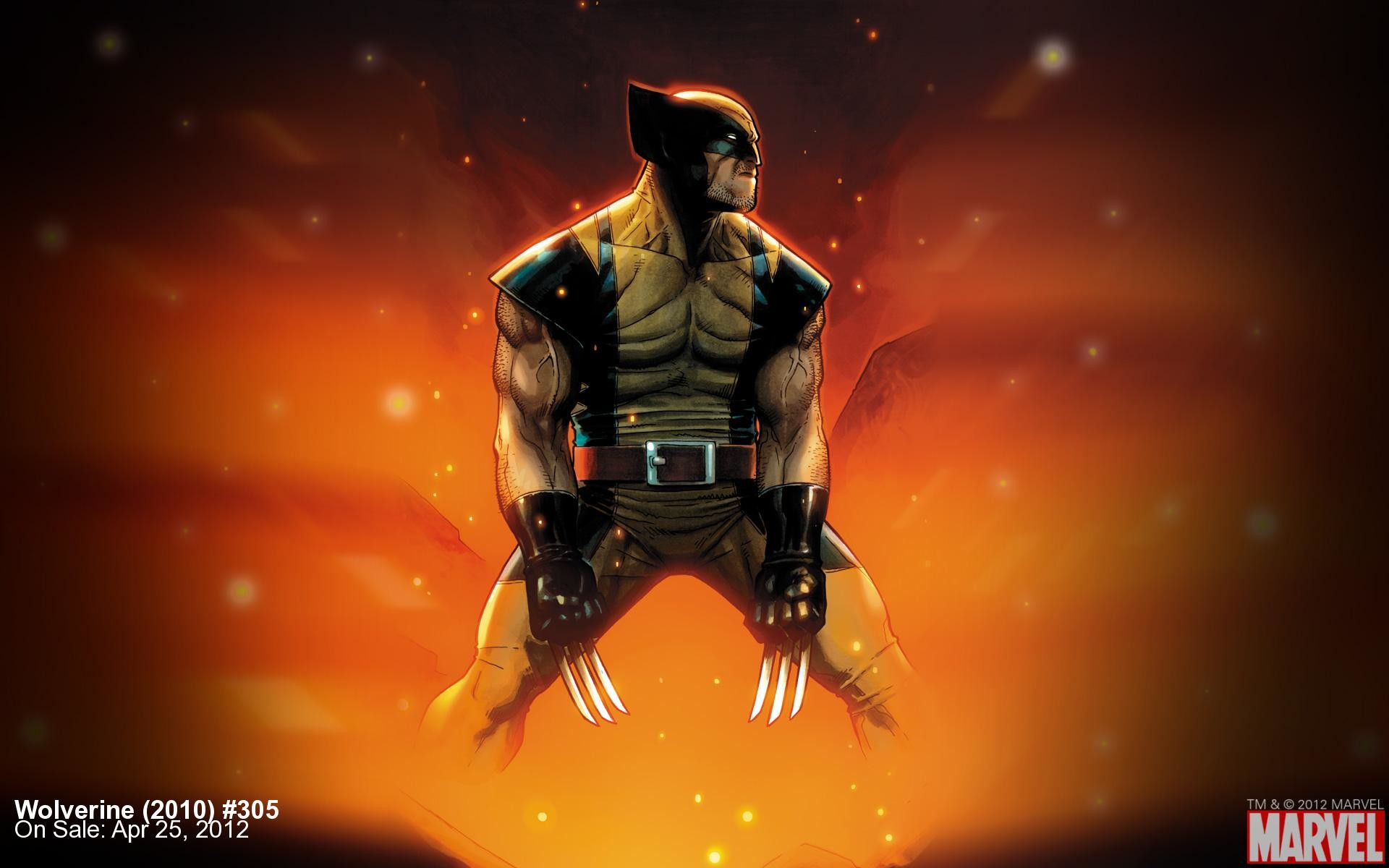 Res: 1920x1200, Wolverine (2010) #305