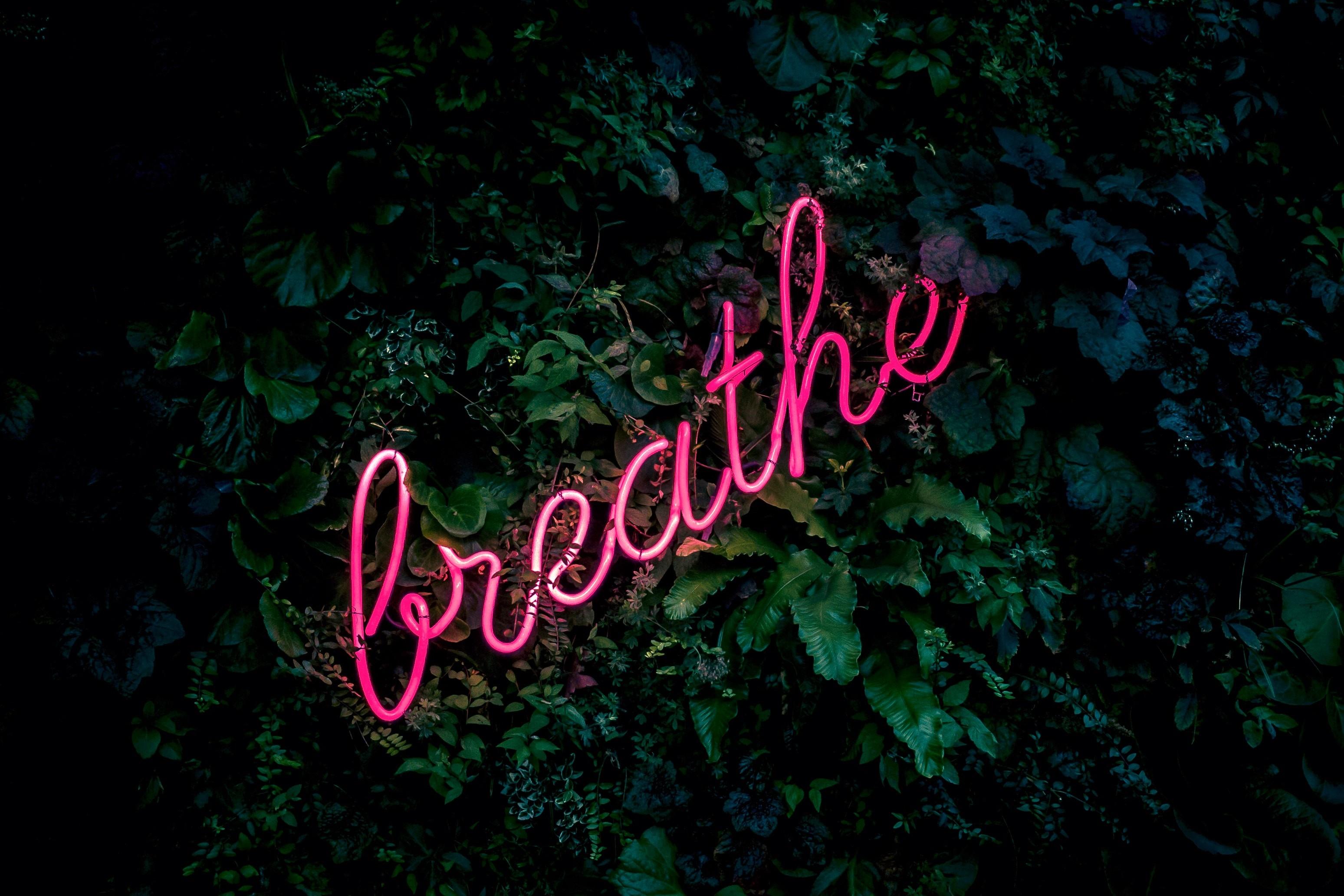 Res: 3097x2065, inscription neon breath foliage Art HD Wallpaper