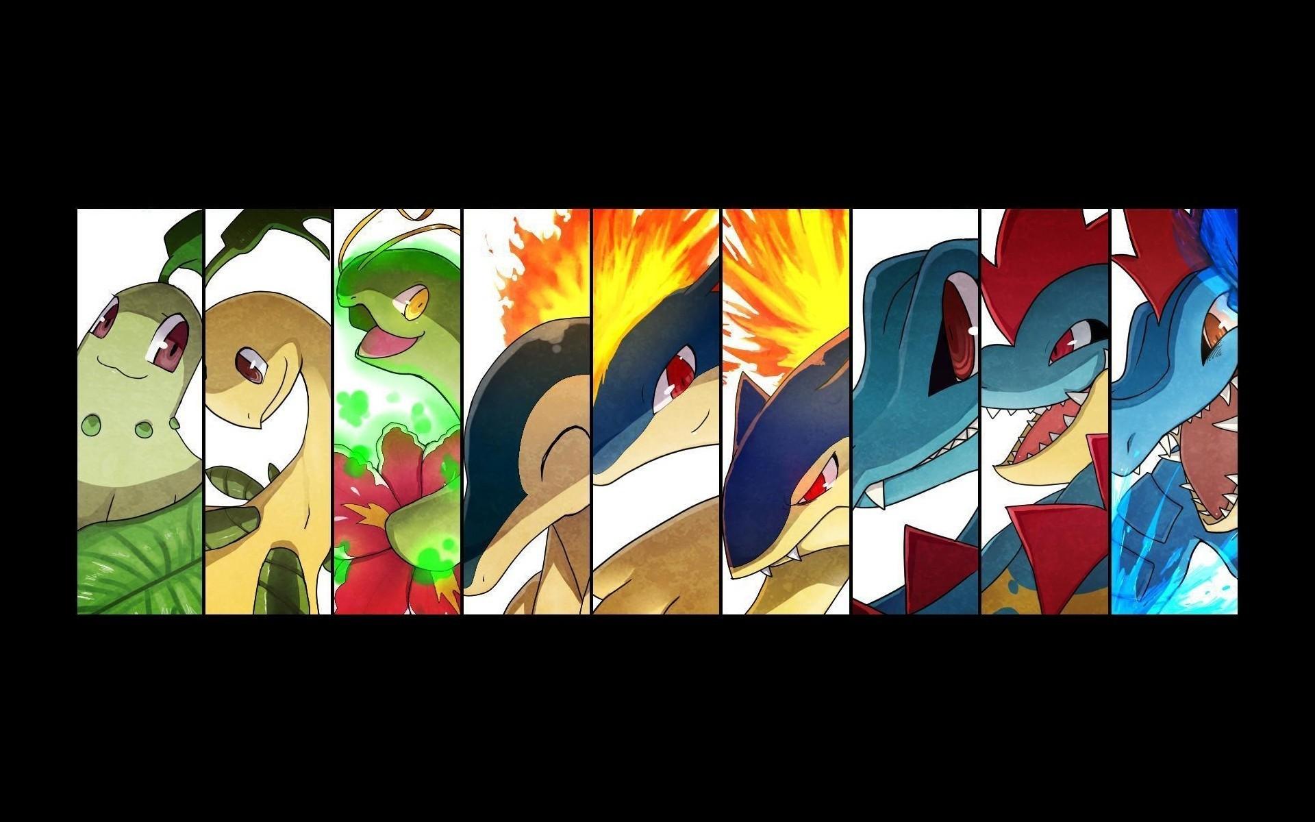 Res: 1920x1200, Pokemon evolution anime Totodile Feurigel Typhlosion Endivie quilava  Feraligatr Meganie Lorblatt Hintergrundbild