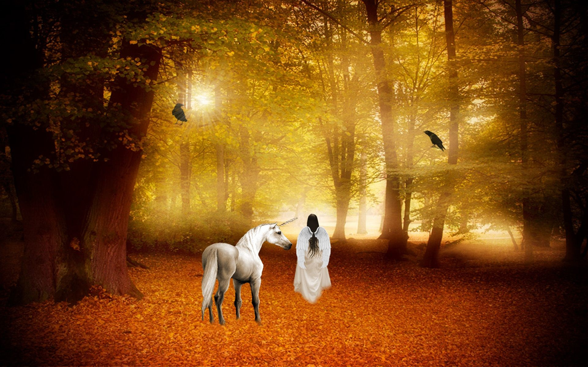 Res: 1920x1200, Magical Fairy Forest | unicorn horse magical animal angel fairy autumn  forest g wallpaper .