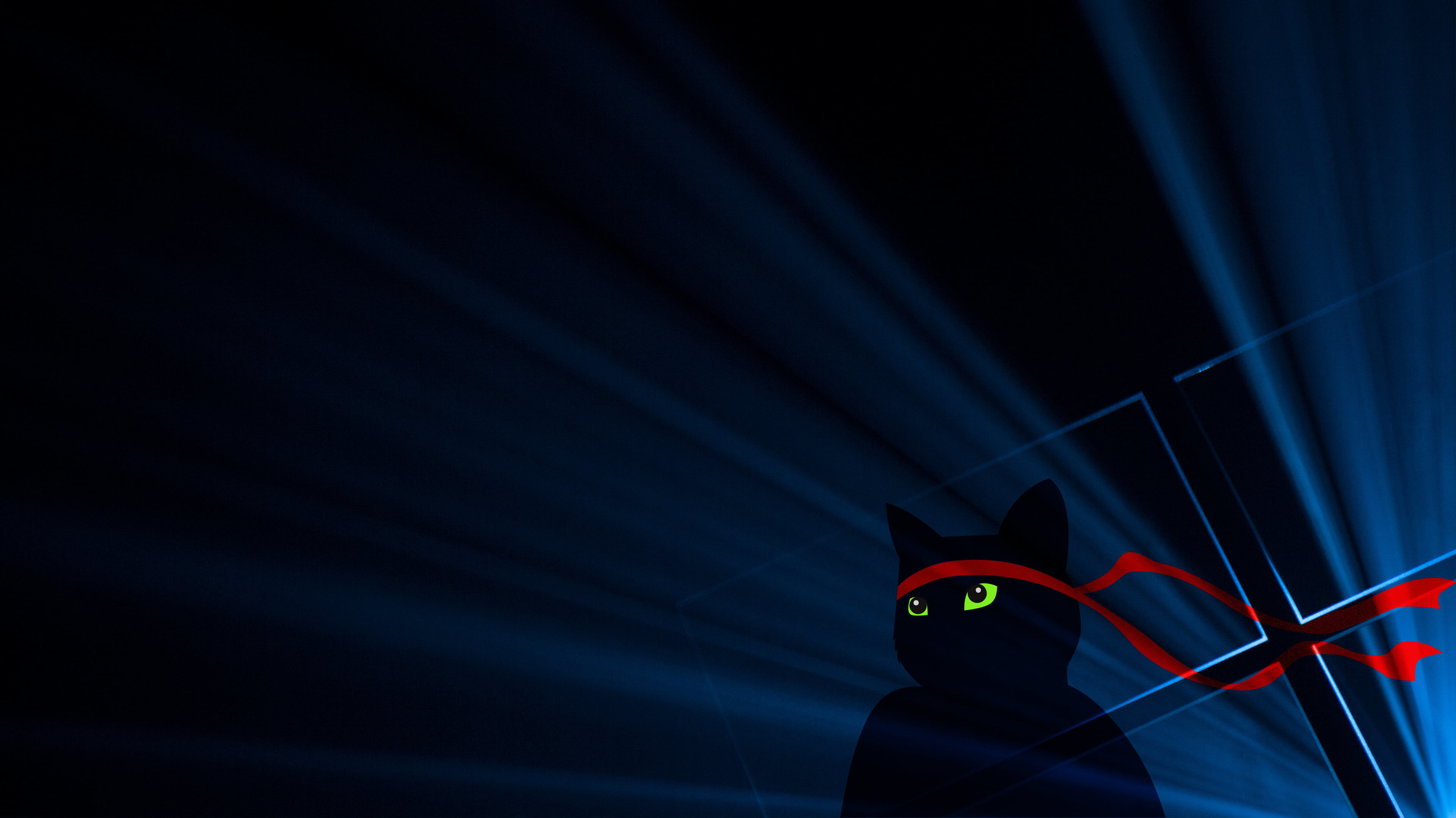 Res: 3840x2160, black cat with red bandana artwork HD wallpaper