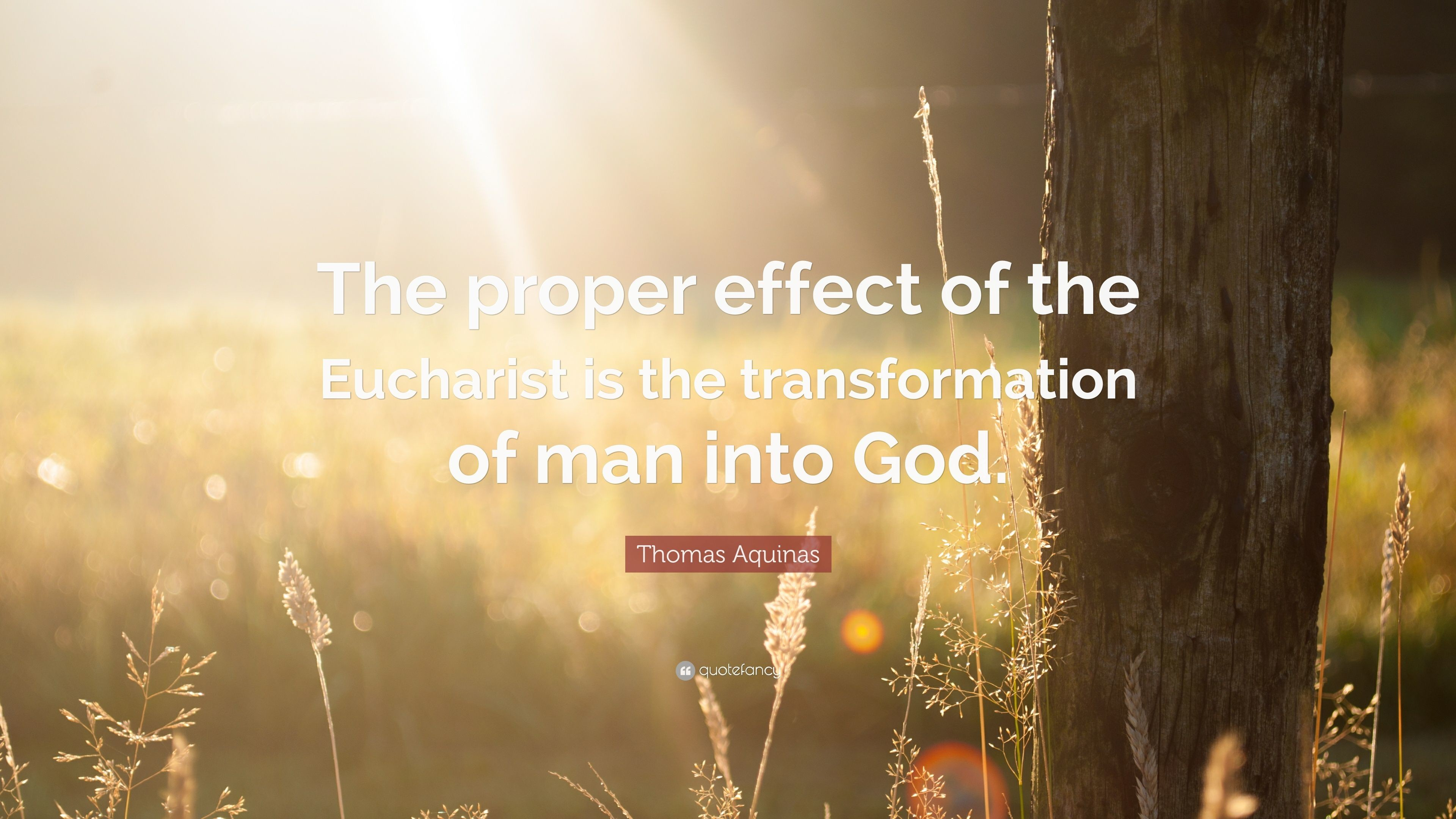 """Res: 3840x2160, Thomas Aquinas Quote: """"The proper effect of the Eucharist is the  transformation of man"""