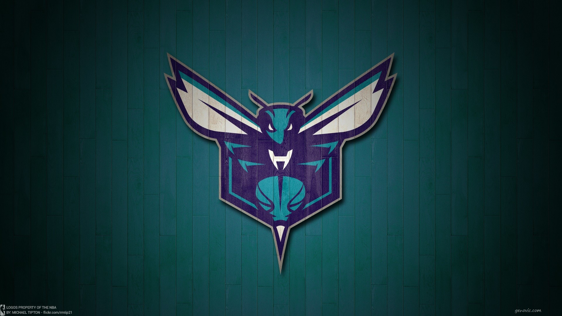 Res: 1920x1080, Top 48 Hornets Images | Original HD Wallpapers Collection