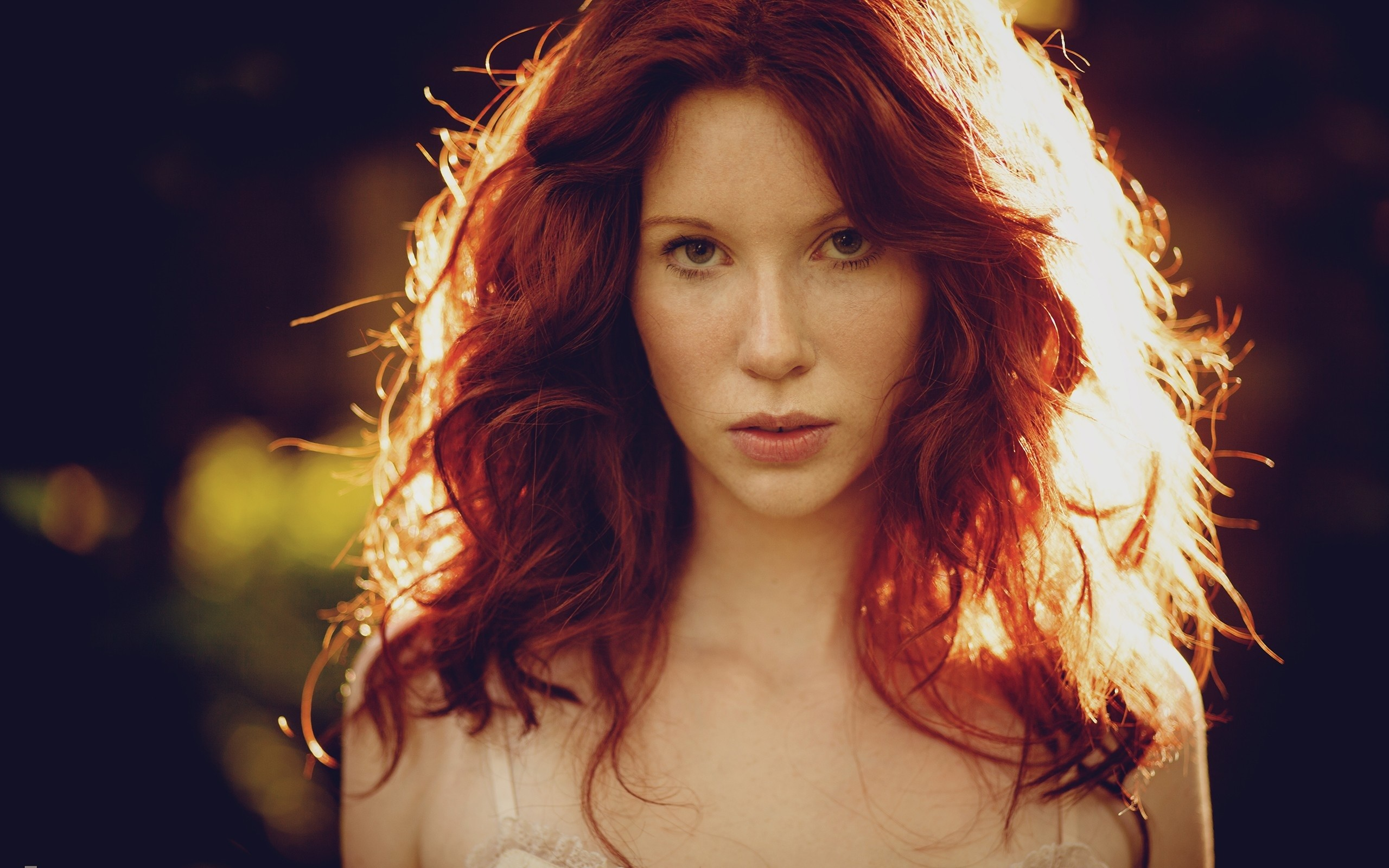 Res: 2560x1600, Image: Pretty Redhead Hair in Sunlight wallpapers and stock photos. Â«