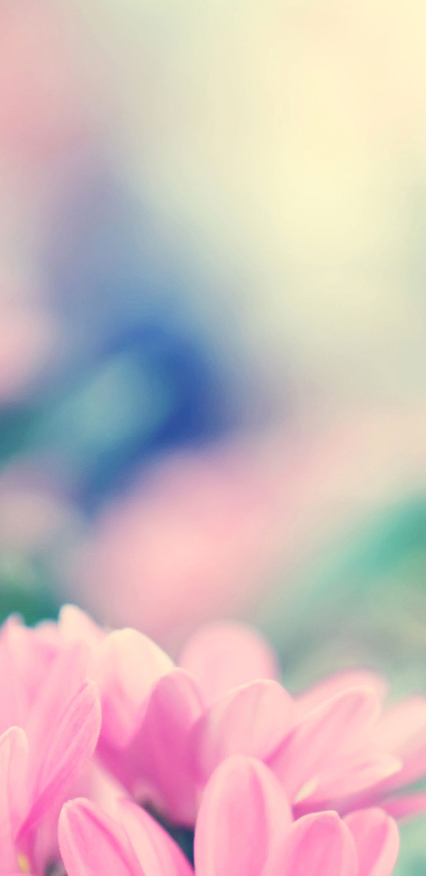 Res: 1440x2960, Pink flowers blurred Galaxy Note 8 Wallpaper