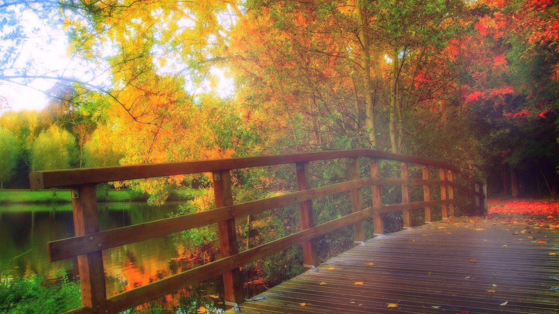Res: 1920x1080, Bridges - PARK BRIDGE FALL Parks Bridges Rivers Love Seasons Autumn  Attractions Dreams Colors Creative Pre