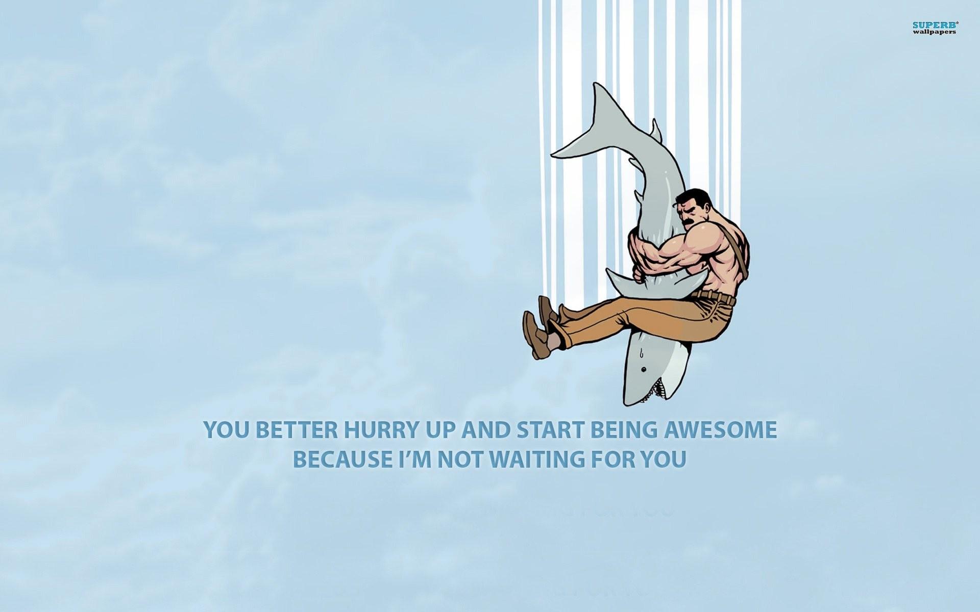Res: 1920x1200, wrestling a shark 433931