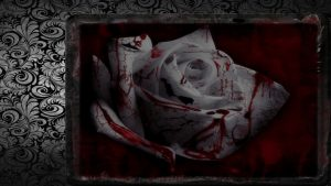 Bloody Rose wallpapers