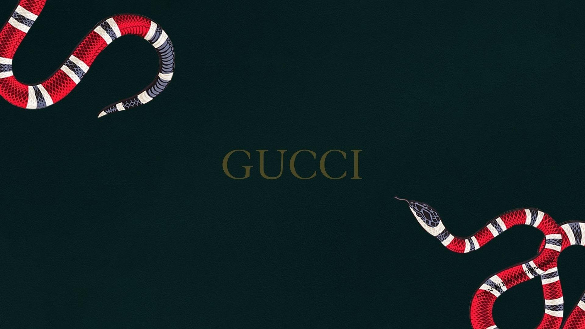 Res: 1920x1080, Basic Gucci Snake Wallpaper