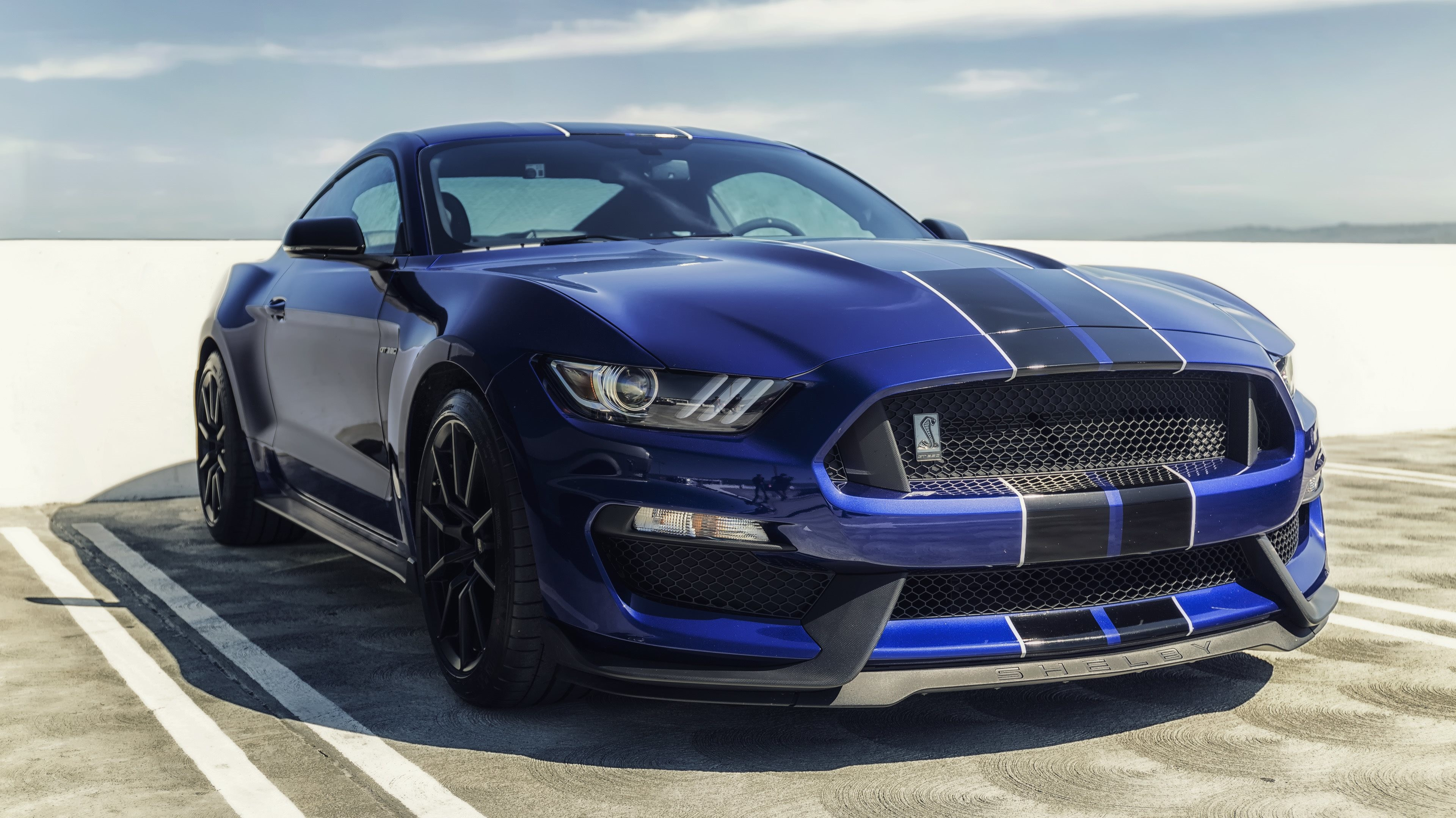 Res: 3840x2160, ford mustang shelby gt350 blue mustang sports cars 4k widescreen wallpaper