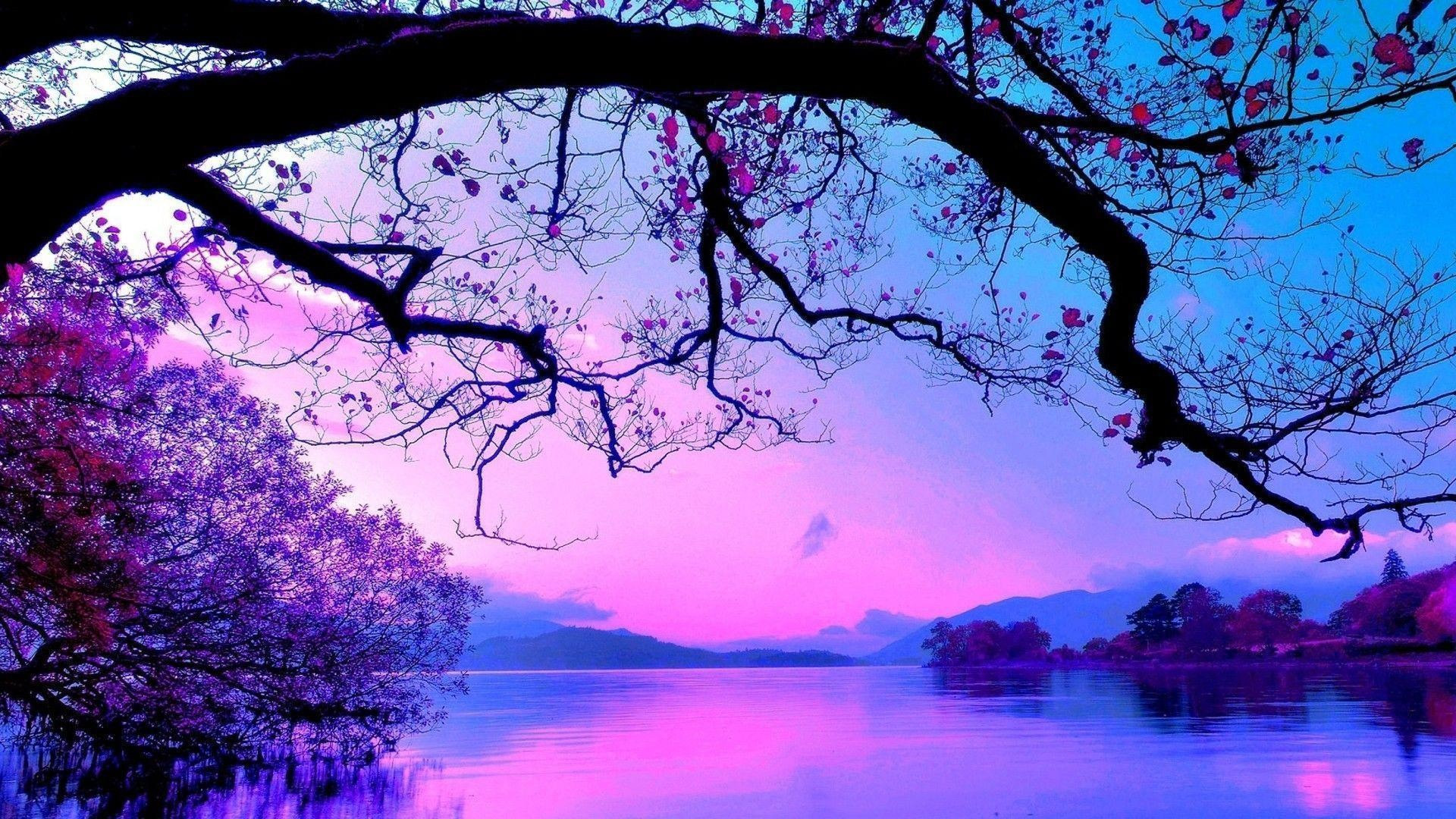 Res: 1920x1080, Wallpapers For > Purple Trees Wallpaper