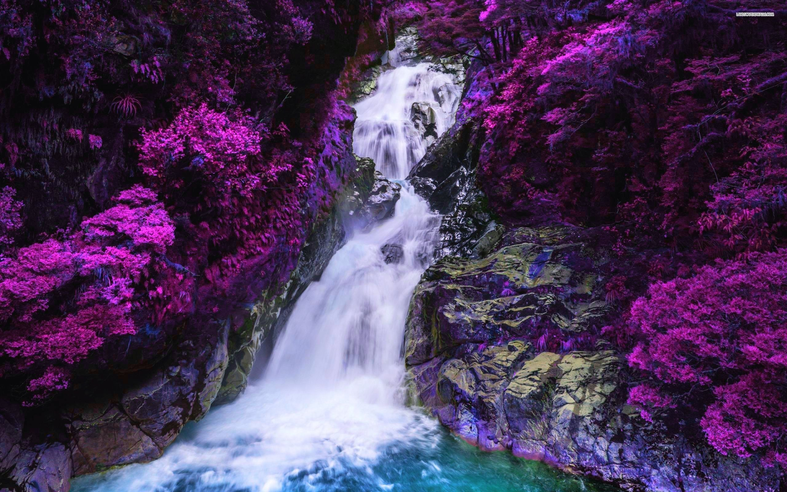 Res: 2560x1600, waterfall surrounded by purple trees