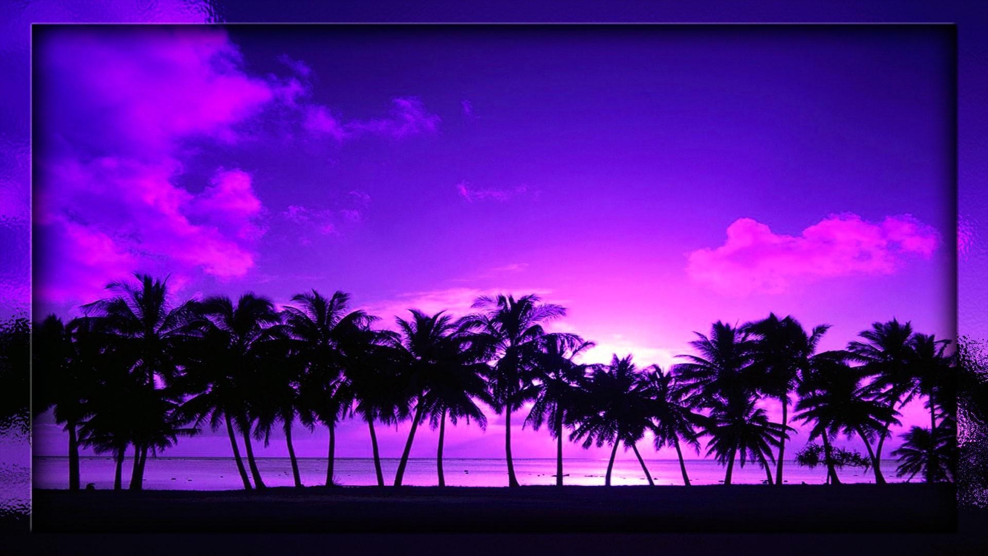 Res: 1920x1080, beach sunset palm tree wallpaperbeach sunset palm tree imagebeach sunset  palm tree