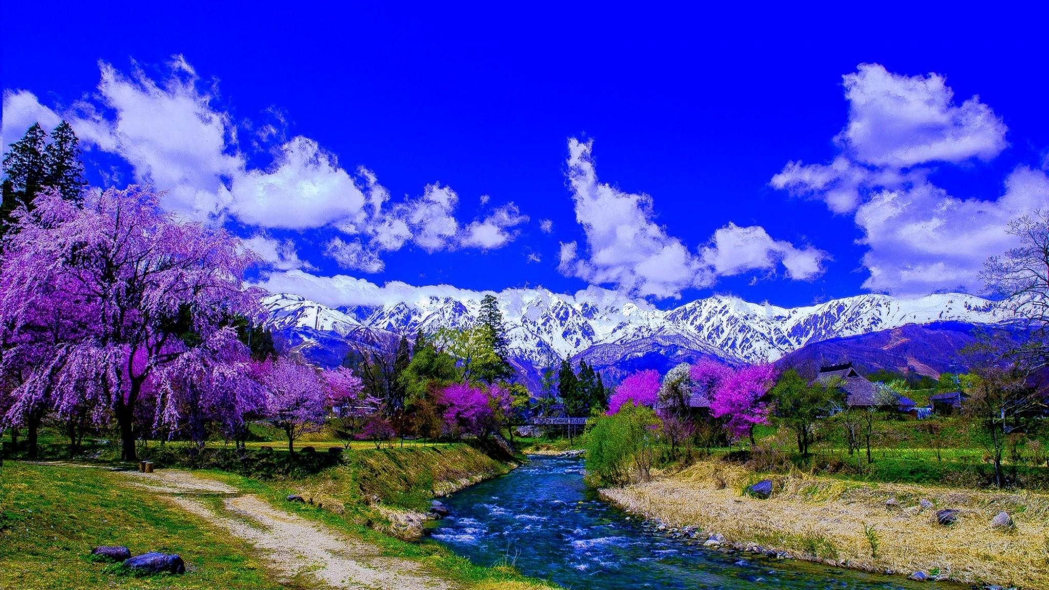 Res: 2048x1152, Fotografie - Landschaft Lila Baum Blüte Gebirge Snow Japan Fluss Erde/Natur  Wallpaper