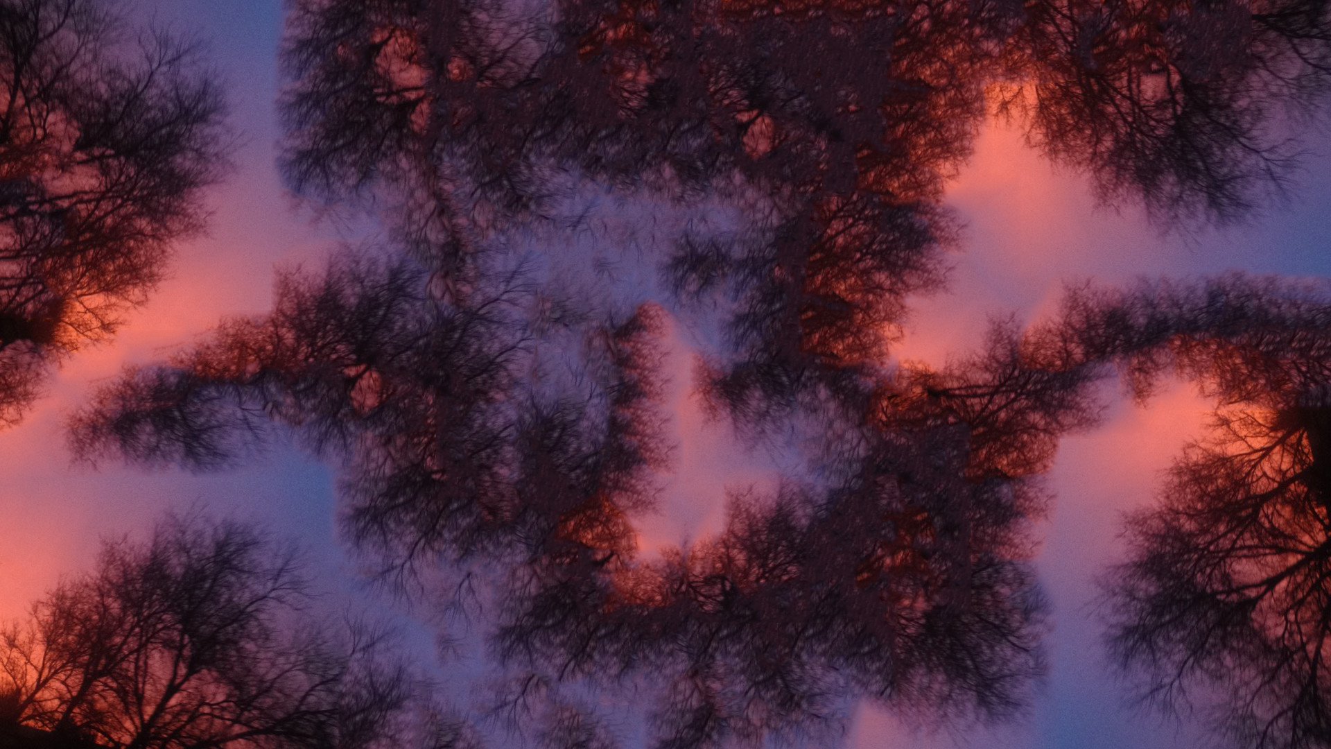Res: 1920x1080, Neon Branches [] · Purple TreesWallpaper ...
