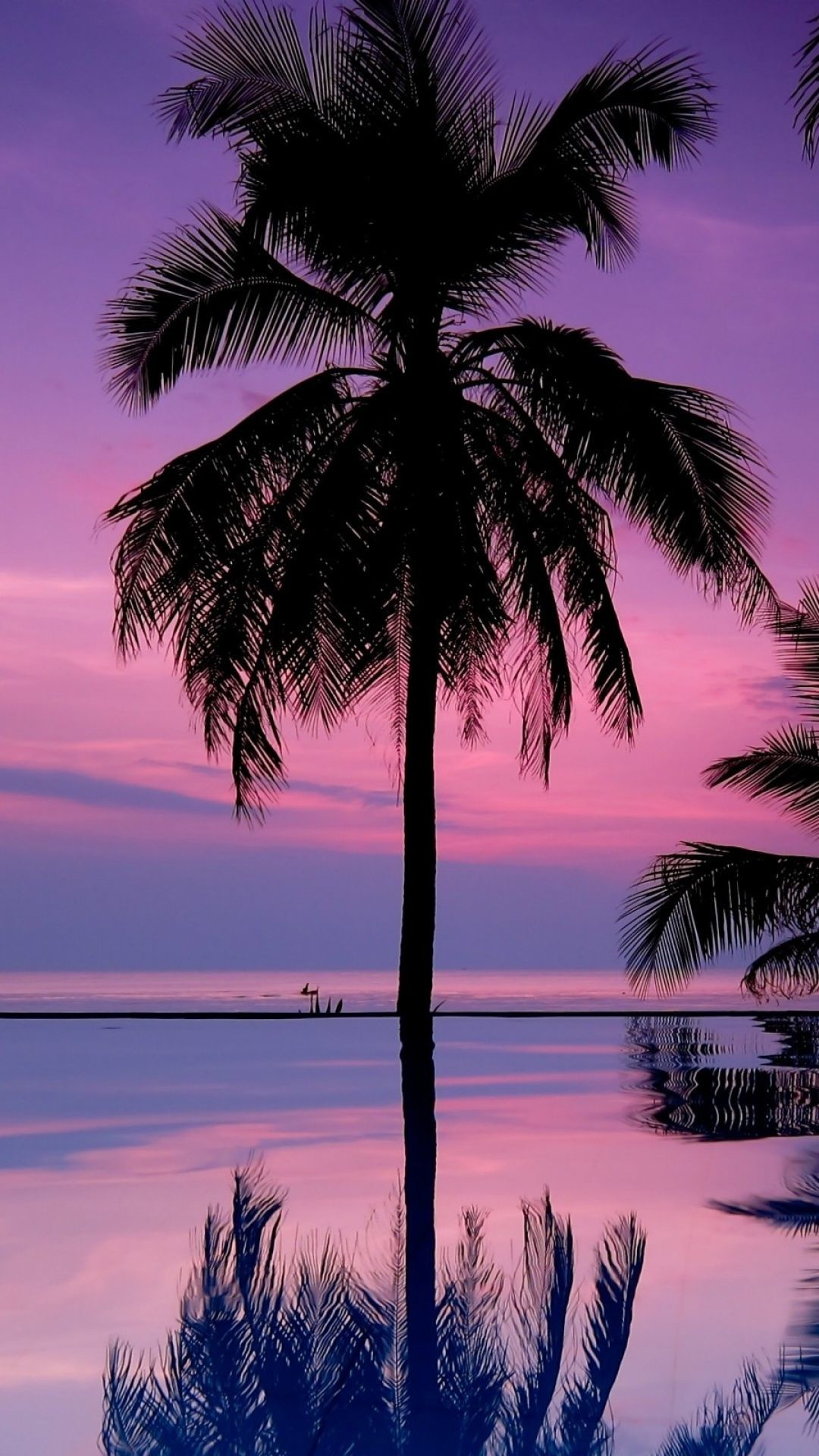 Res: 1080x1920, Download Wallpaper  palm trees, night, silhouettes Sony Xperia Z1,  ZL, Z