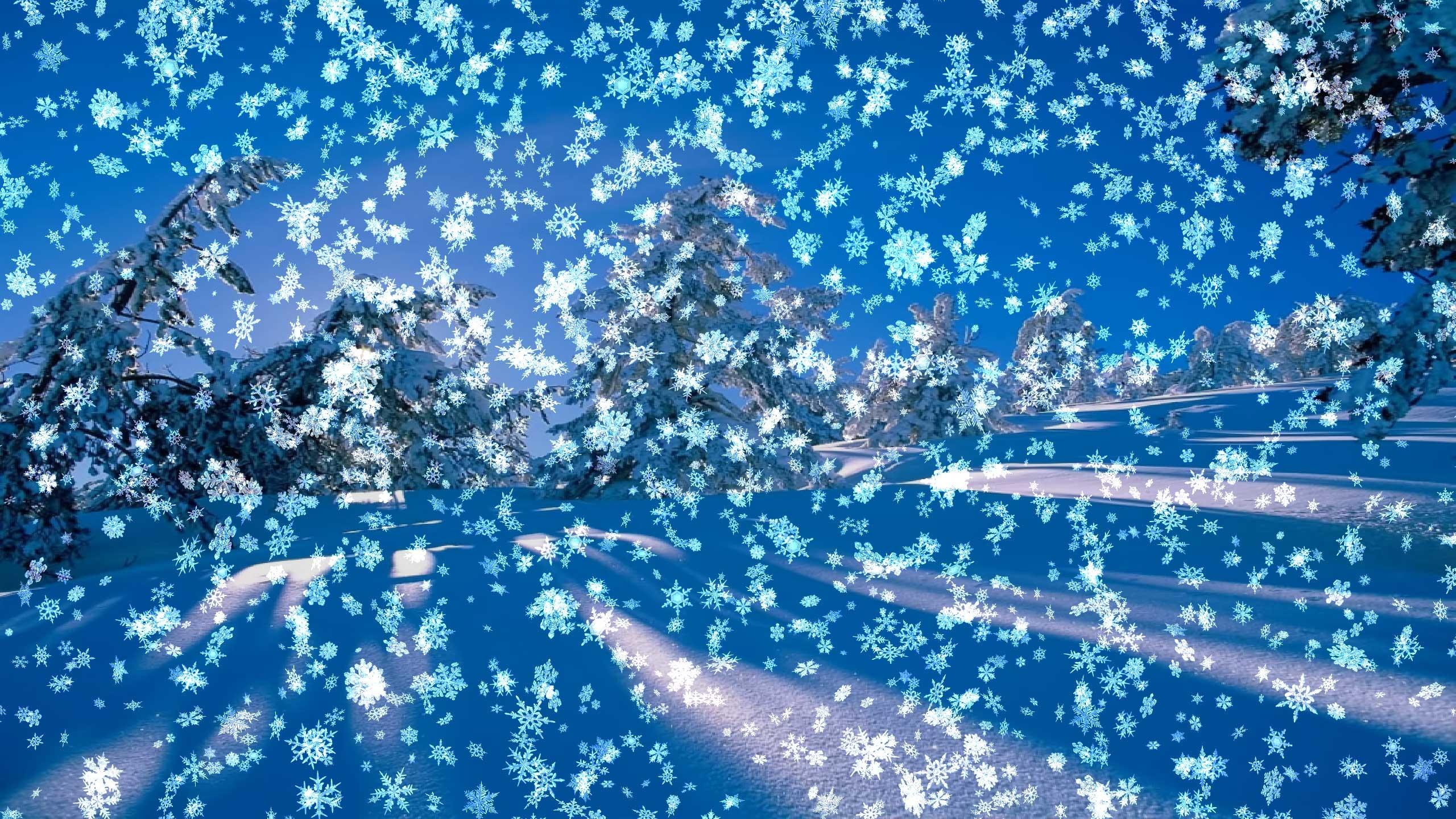 Res: 2560x1440, Snowy Desktop 3D