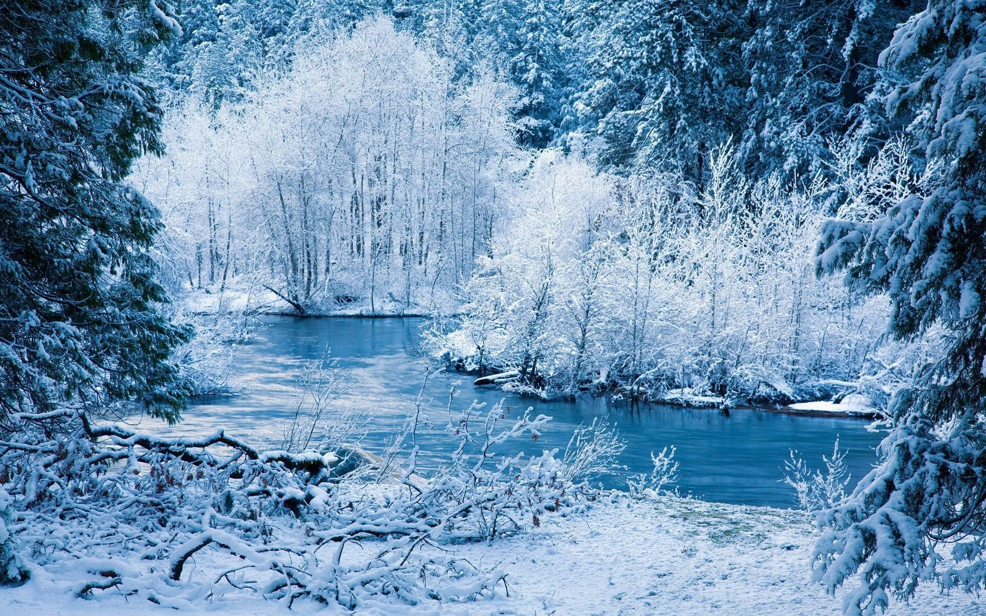 Res: 1920x1200, Gallery for - free desktop wallpapers winter season