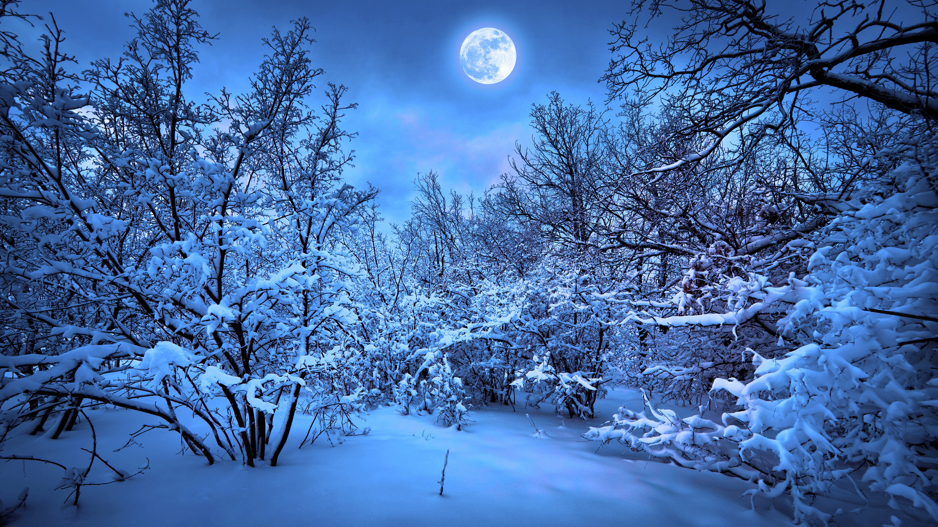 Res: 1920x1080, Snow Night Wallpaper Photo