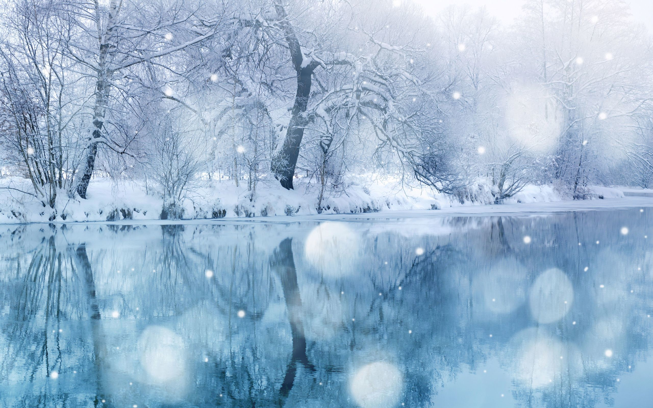 Res: 2560x1600, Winter-Wonderland-Desktop-Wallpapers-Gallery-(68-Plus)-PIC-WPW5010678