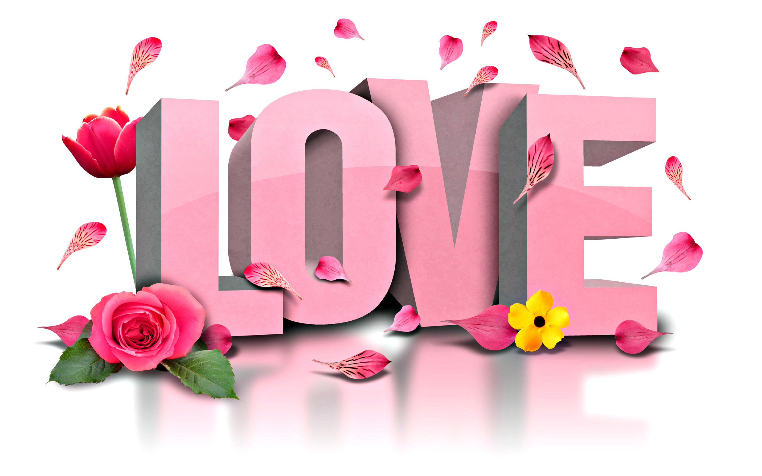 Res: 2560x1600, Holiday - Valentine's Day Holiday Love Word Flower Rose Tulip Petal Pink  Wallpaper
