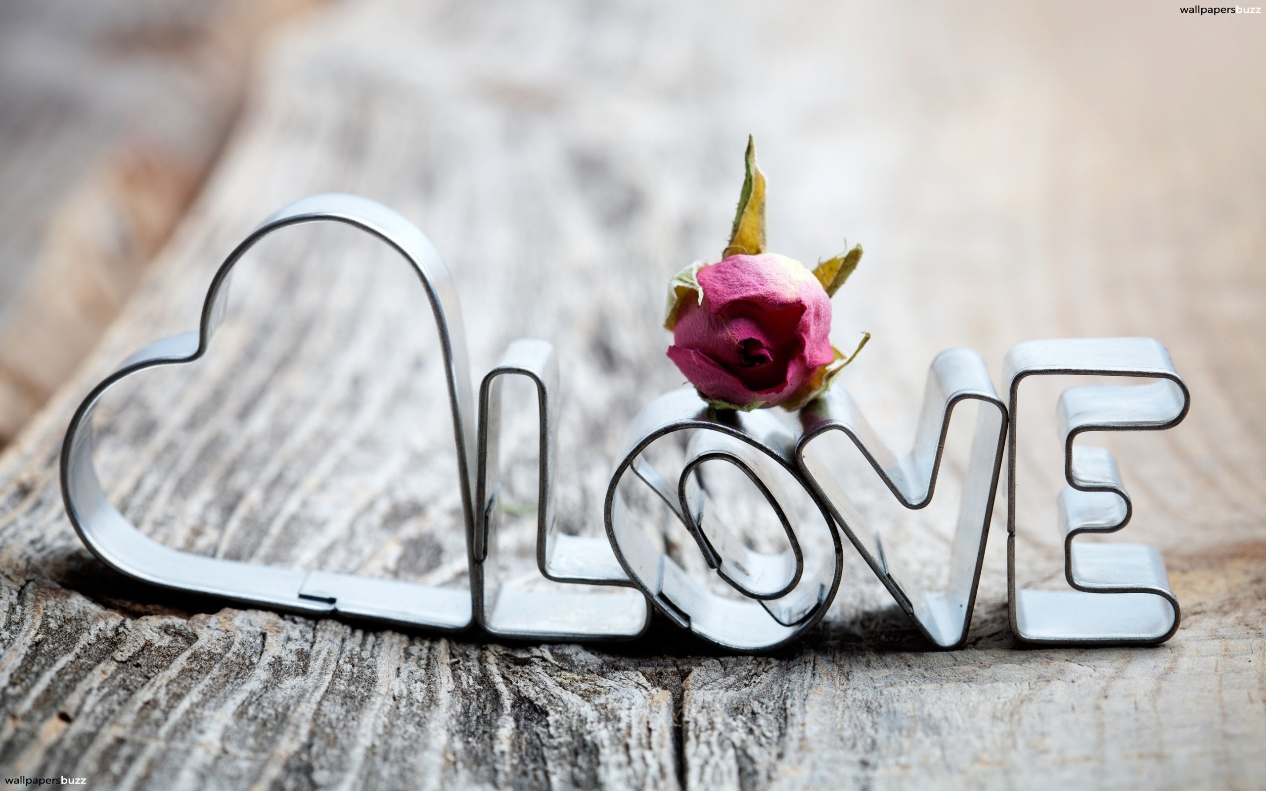 """Res: 2560x1600, This one: Love Heart, beautiful flowers, and of course, love. This picture  has everything the heart, the rose and the word """"love."""