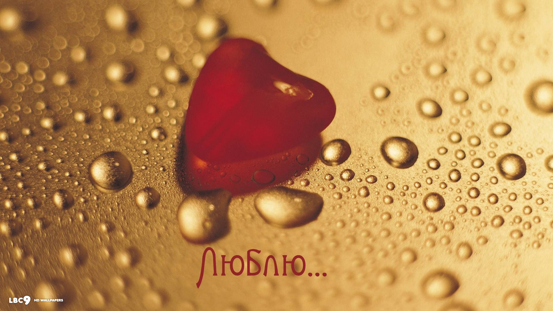 Res: 1920x1080, i love you russian word language red heart water drops hd wallpaper