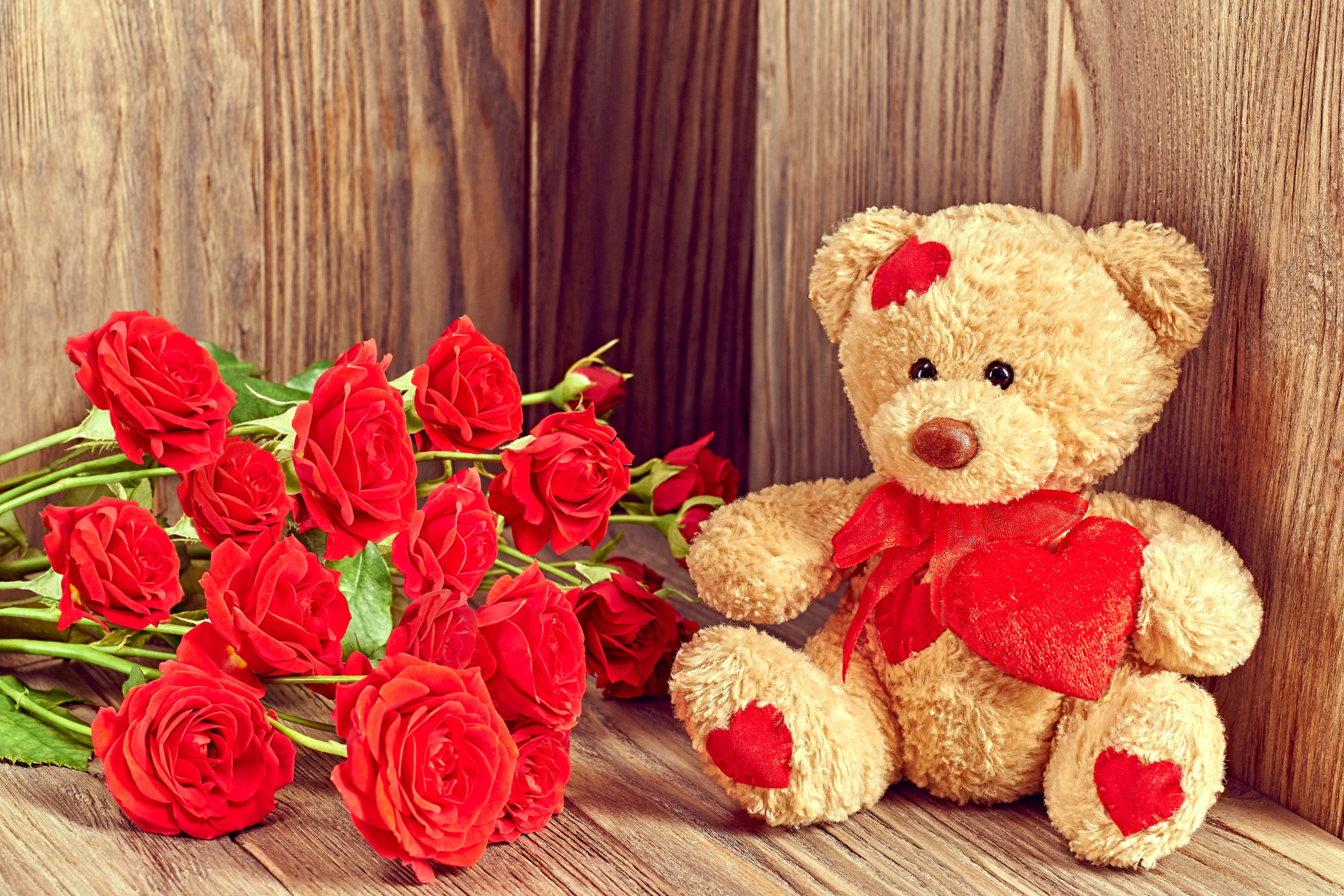Res: 1920x1280, red roses cute teddy bear picture background wallpaper