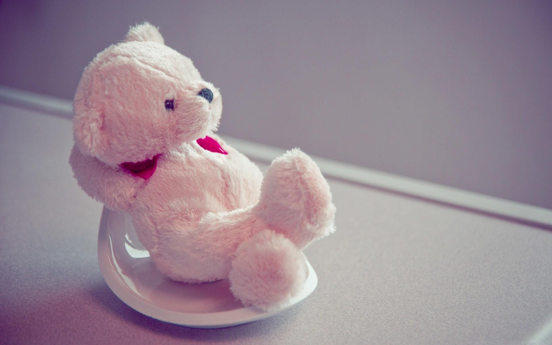 Res: 1920x1200, Beautiful Cute Teddy Bear HD Wallpapers