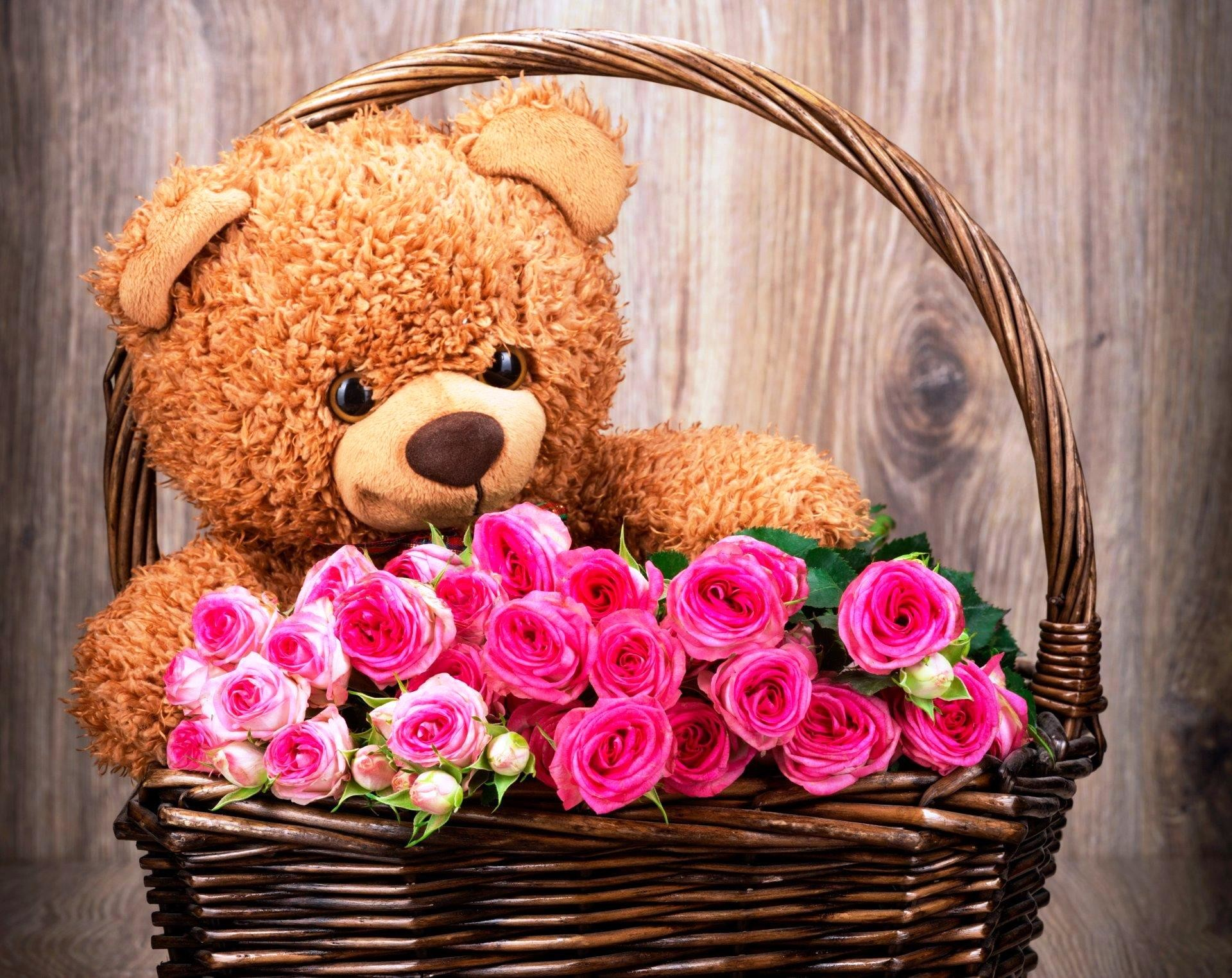 Res: 1920x1524, Pink Roses With Teddy Bear Wallpapers
